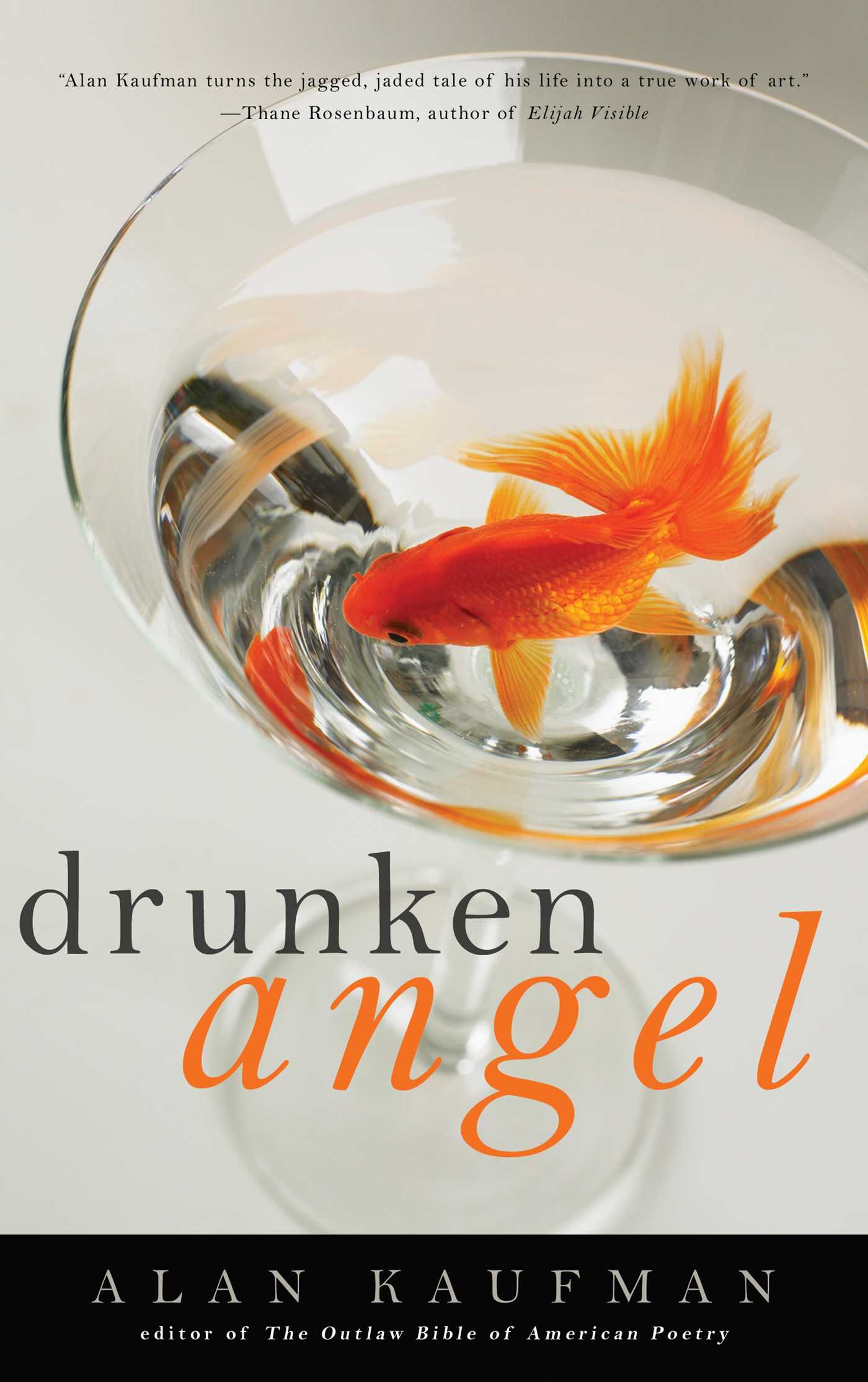 Image for Drunken Angel: A Memoir