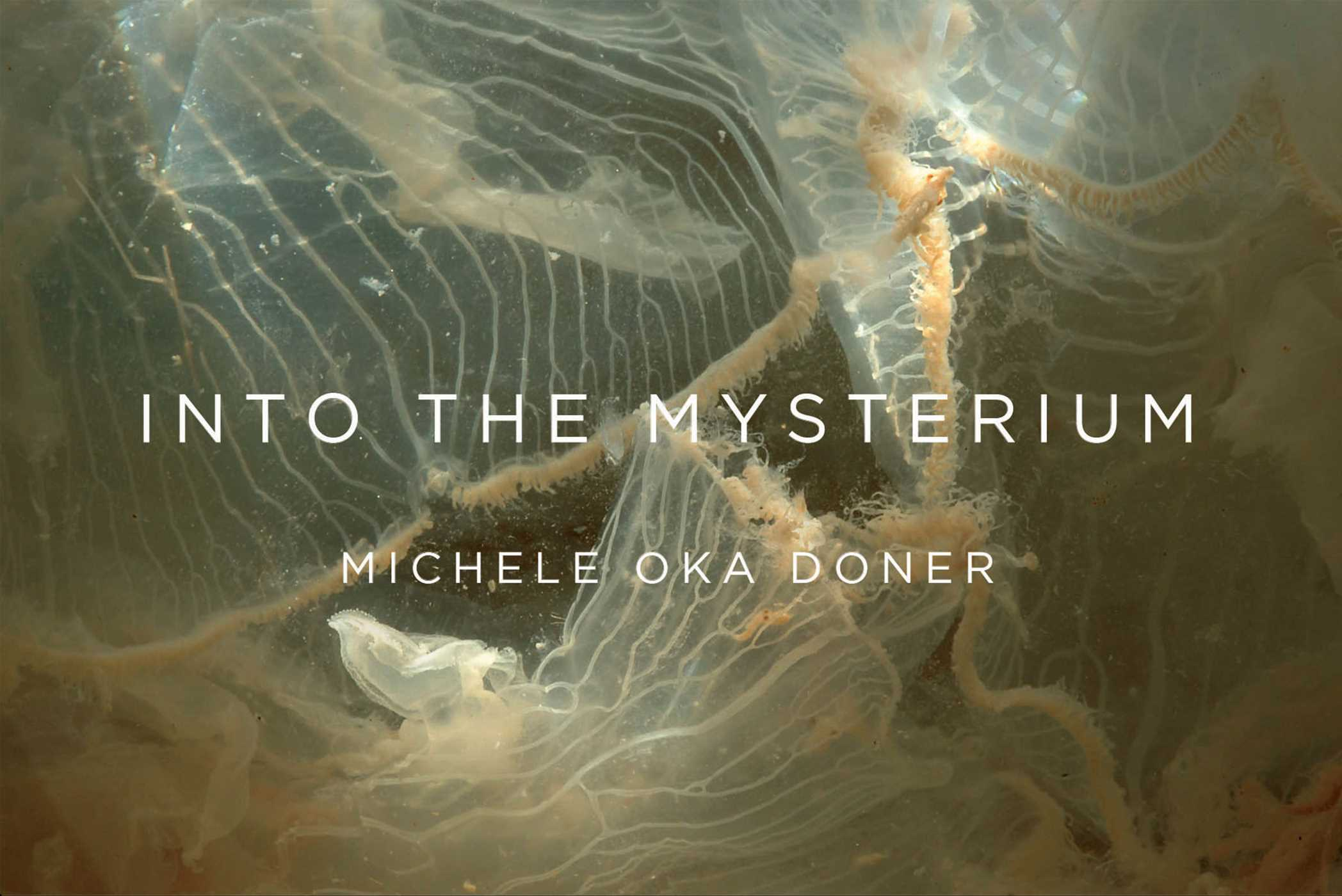 Into the mysterium 9781942872993 hr