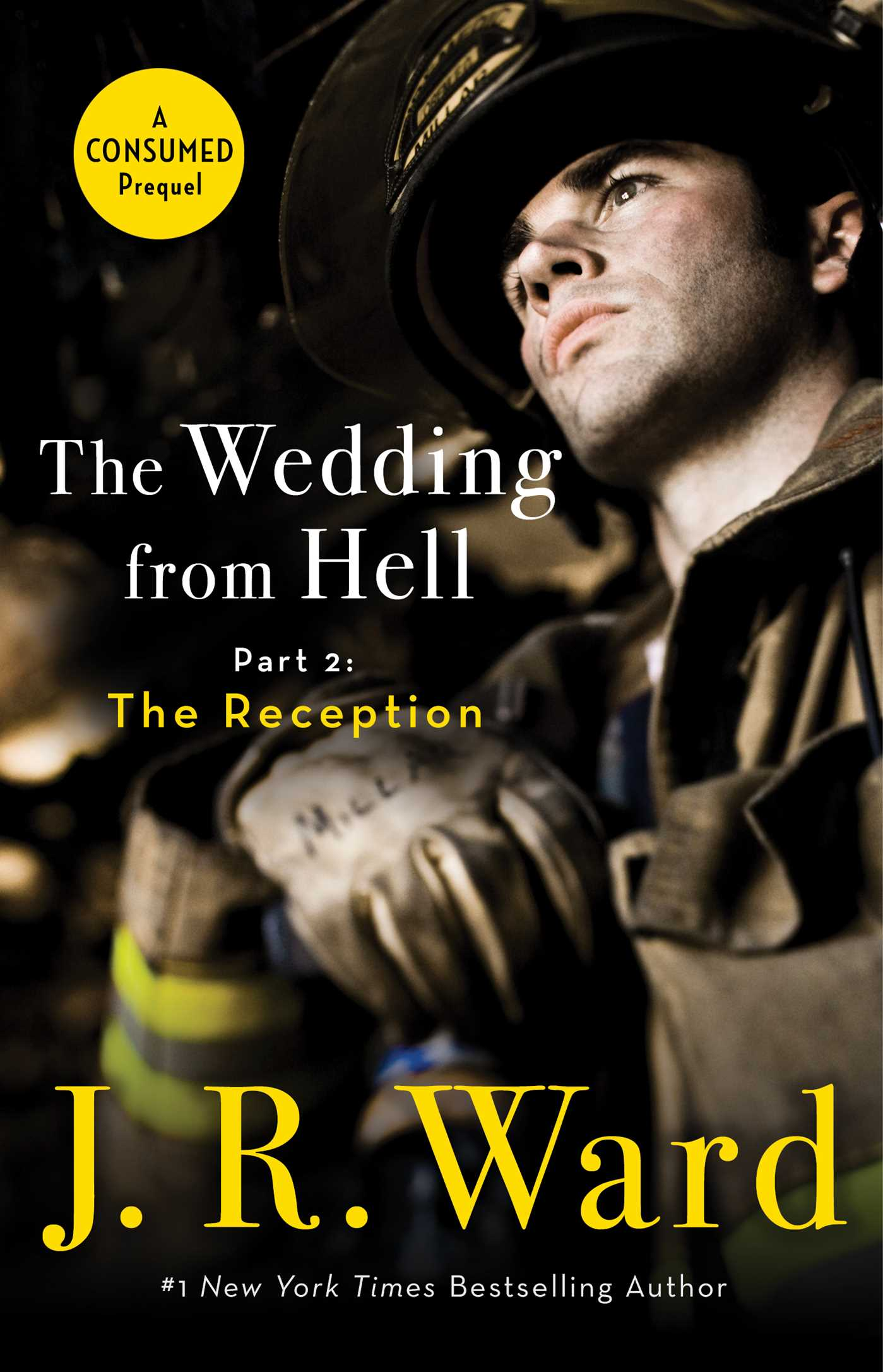 The wedding from hell part 2 the reception 9781982105372 hr