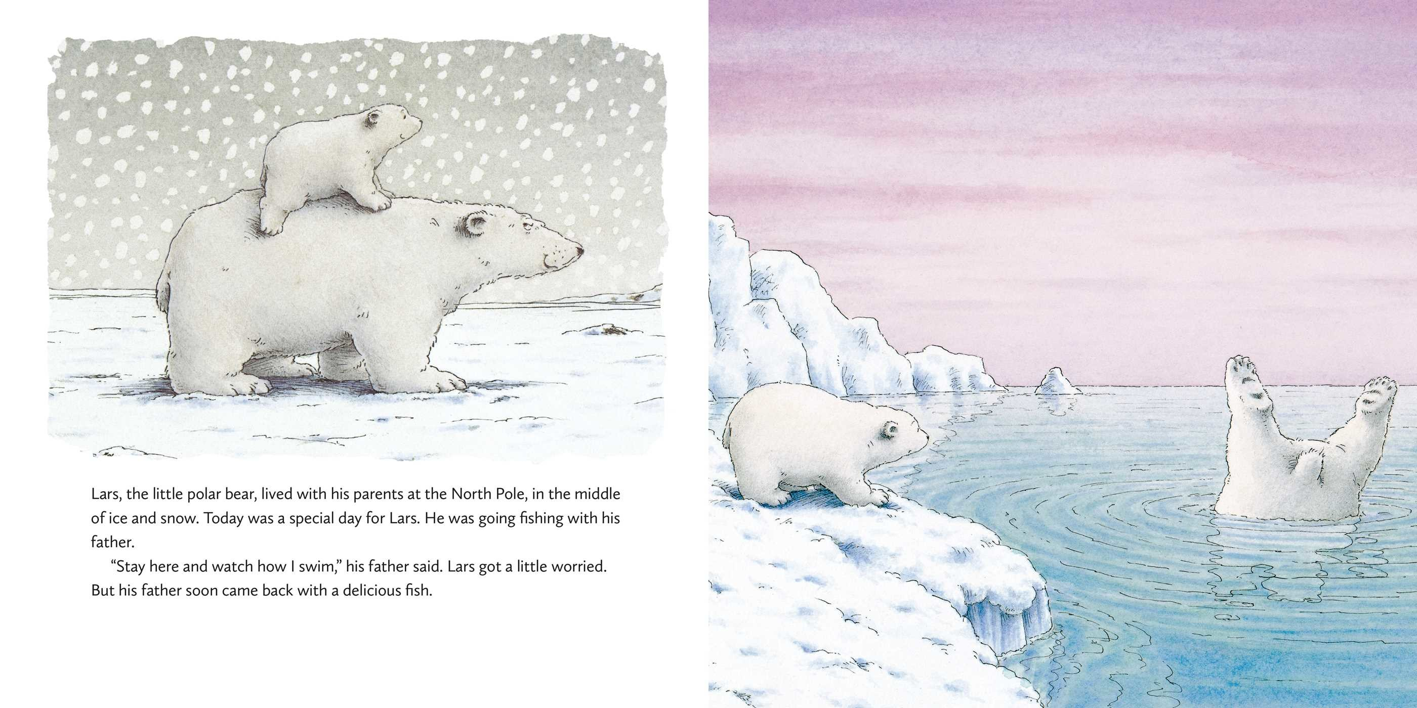 The little polar bear board book 9780735843165.in01
