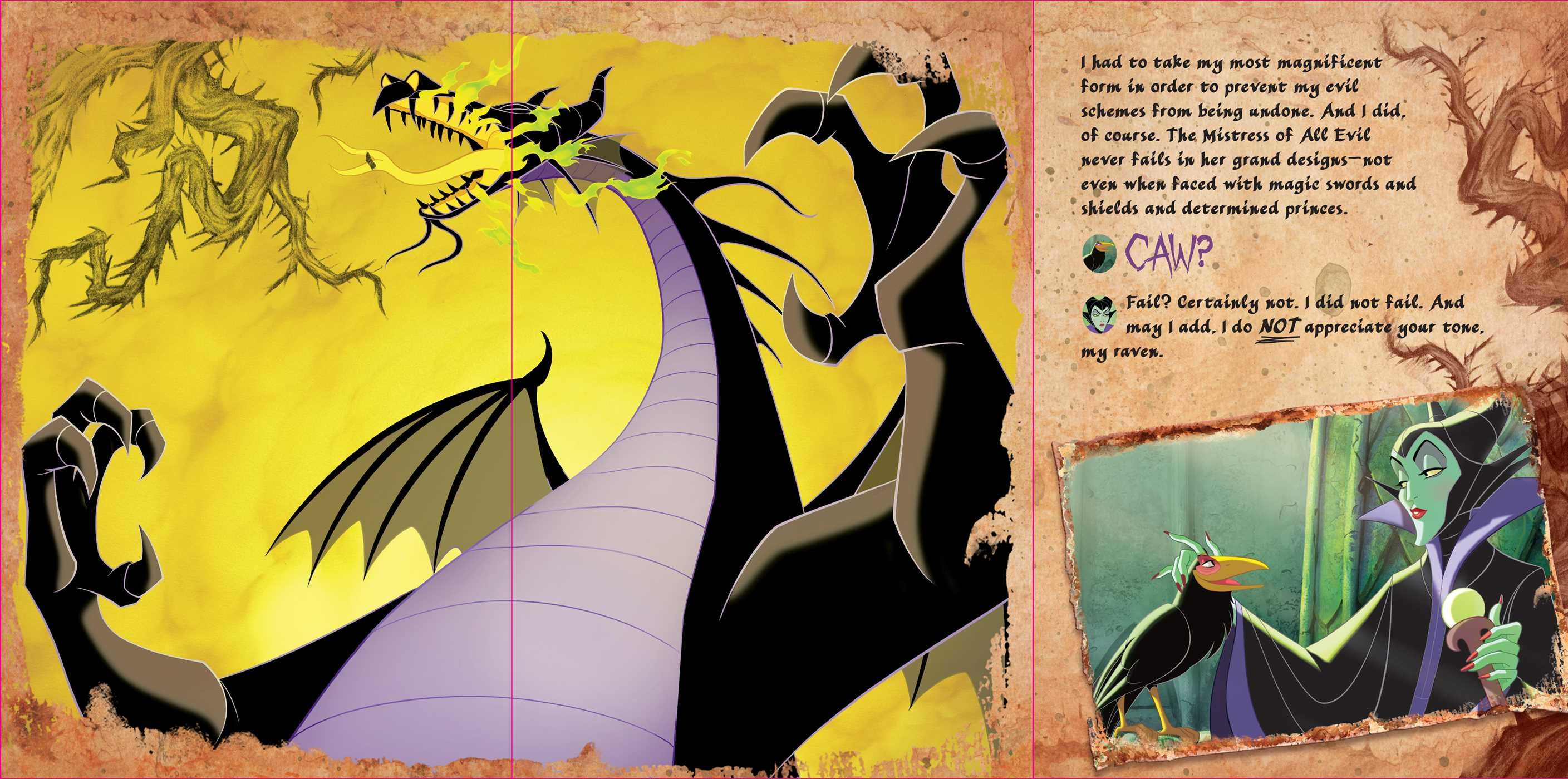 Disney villains the evilest of them all 9780794441609.in02
