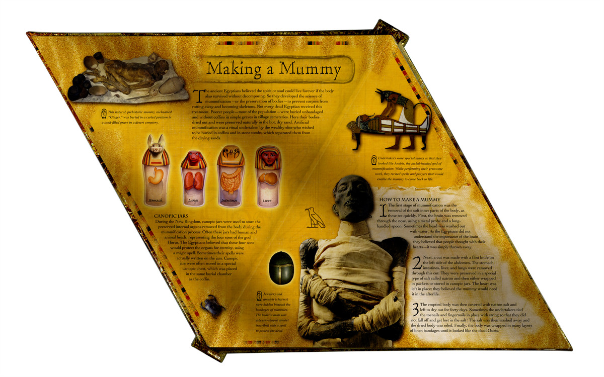 Pyramids and mummies 9781416958734.in02