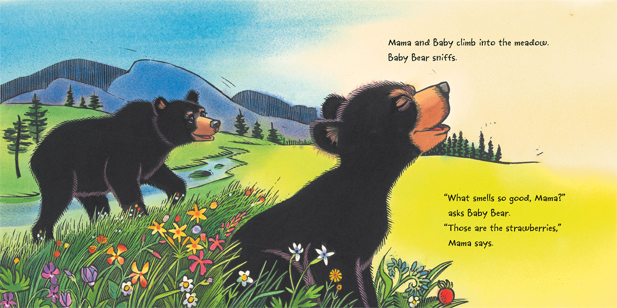 Baby bear sees blue 9781442413061.in01