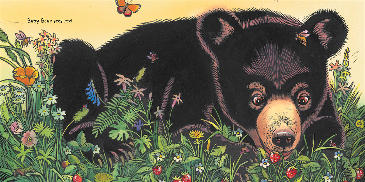Baby bear sees blue 9781442413061.in02