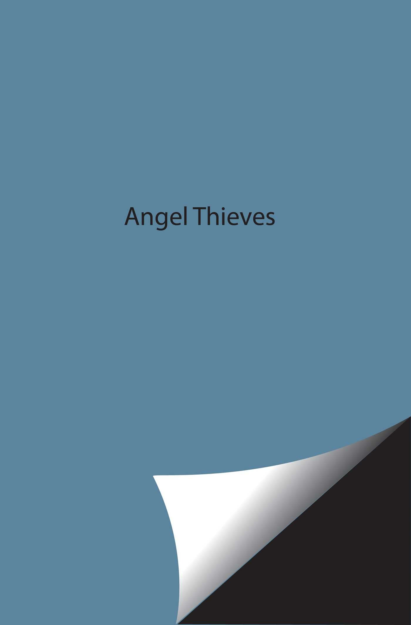 Angel thieves 9781442421097.in02