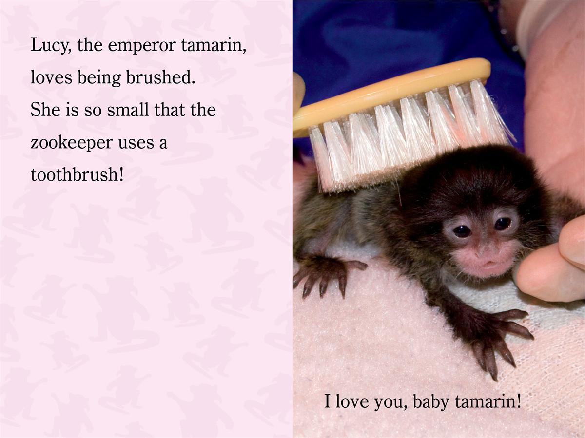 I love you zooborns! 9781442443808.in02