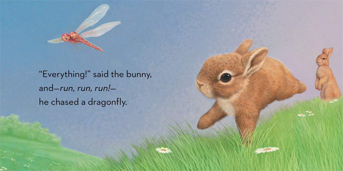 Little bunny 9781442458512.in01