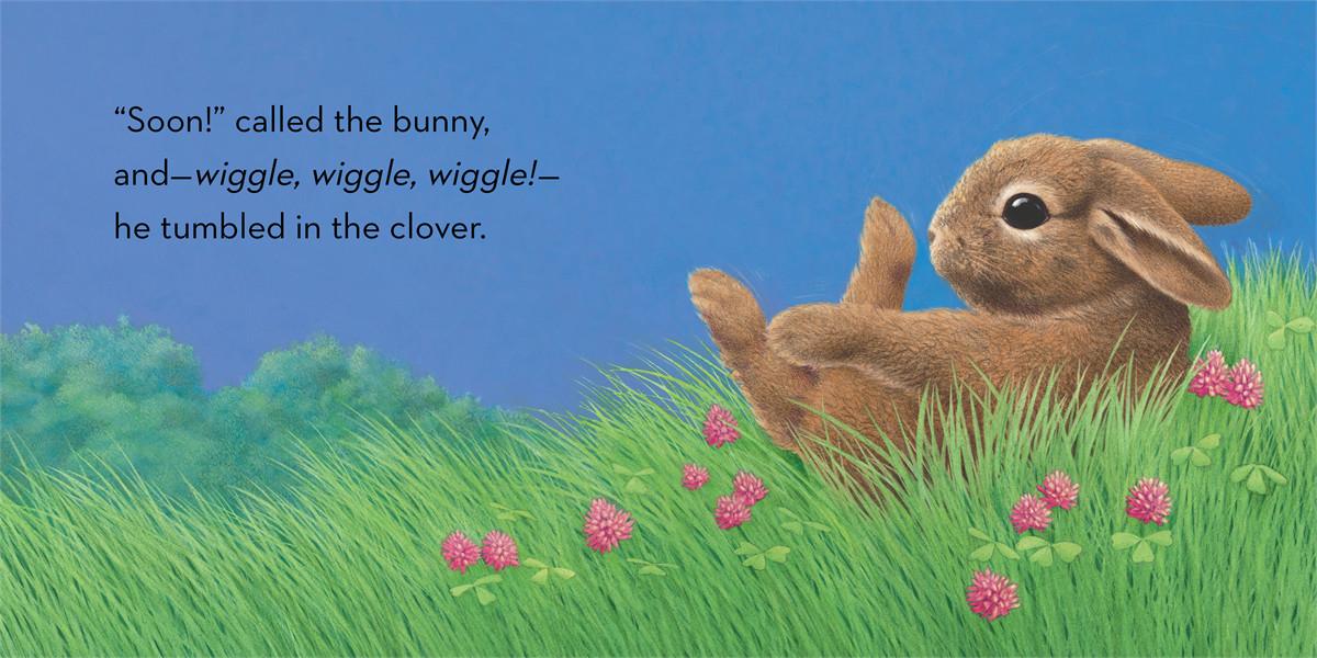 Little bunny 9781442458512.in02