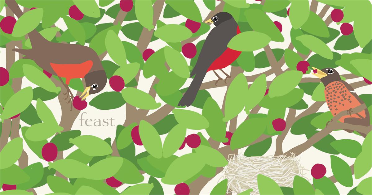 Nest 9781442489714.in01
