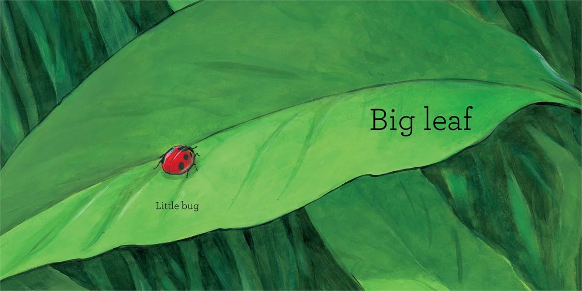 Big bug 9781442498976.in01