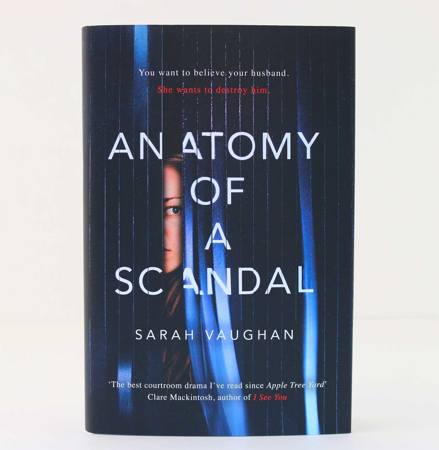 Anatomy of a scandal 9781471164996.in08