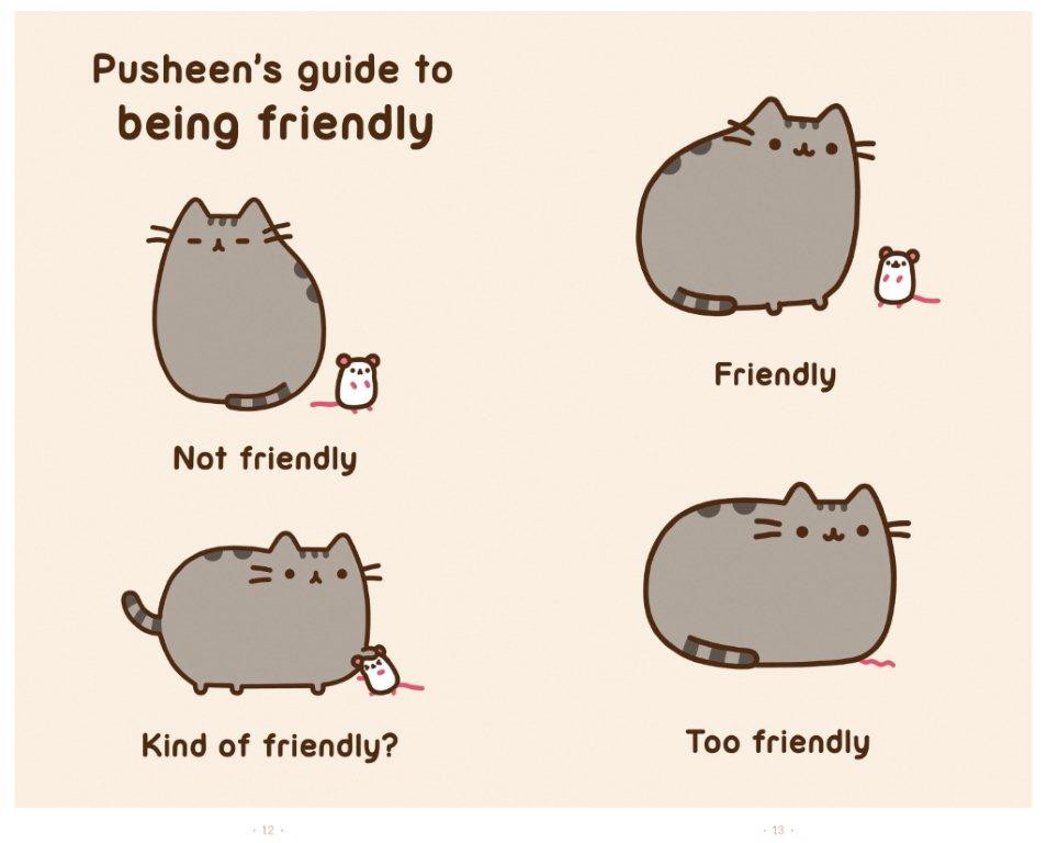 Pusheen Cat Food