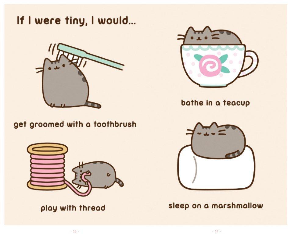 I am pusheen the cat 9781476747019.in04
