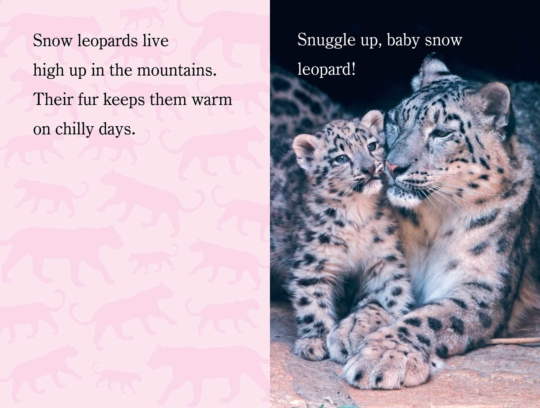 Snuggle up zooborns 9781481431002.in04