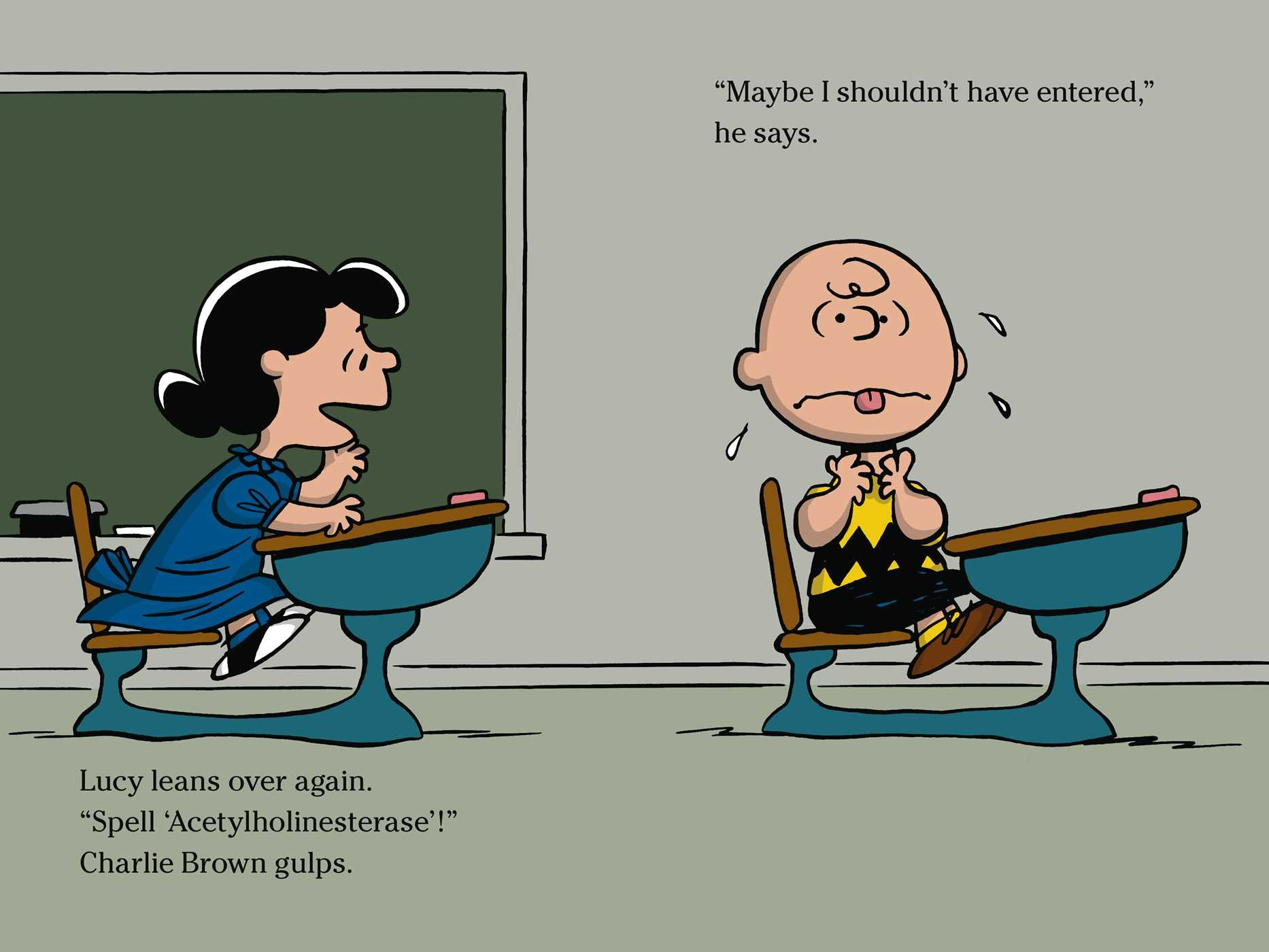 Time for school charlie brown 9781481436052.in06