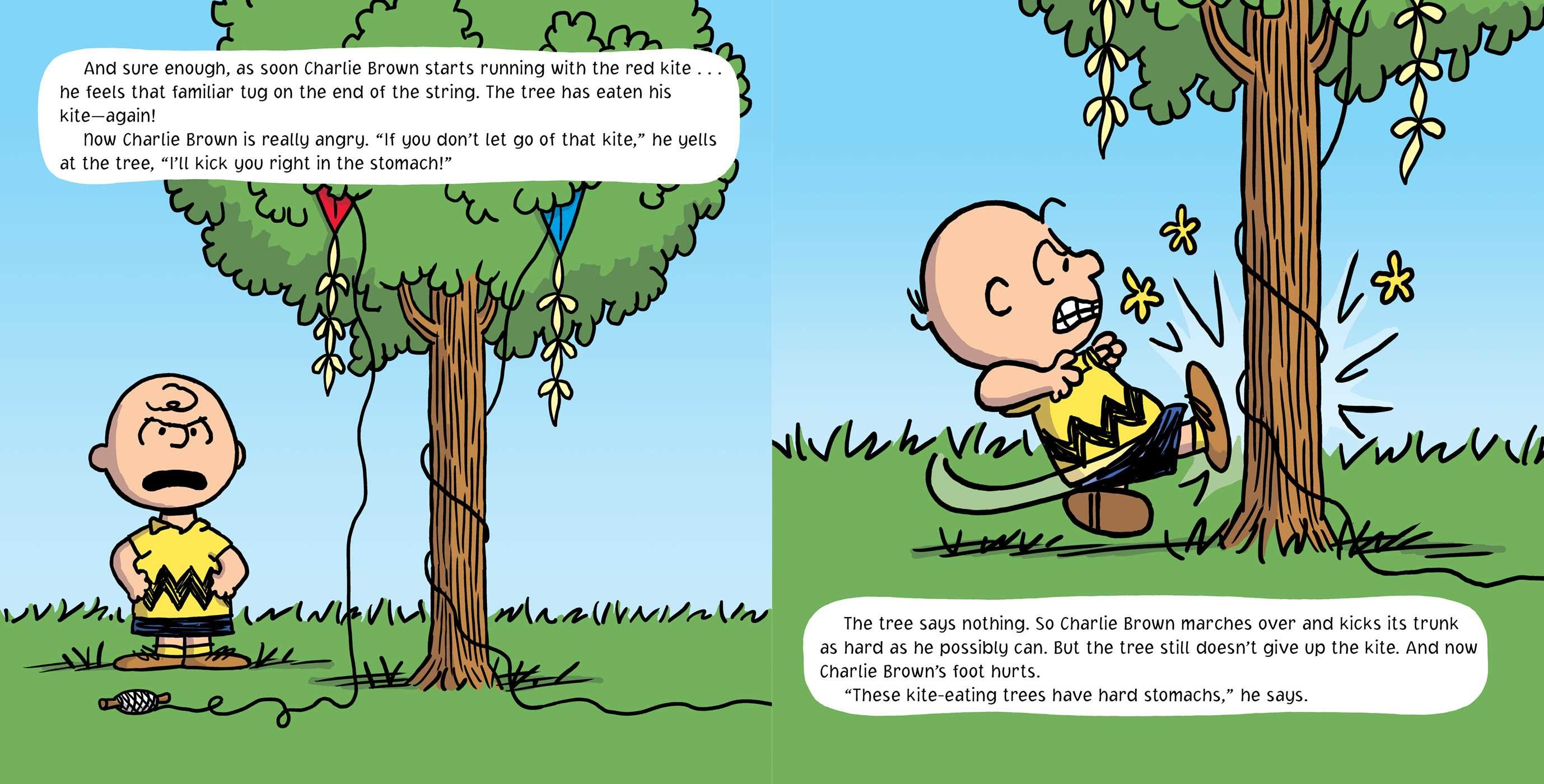 Go fly a kite charlie brown 9781481439558.in02