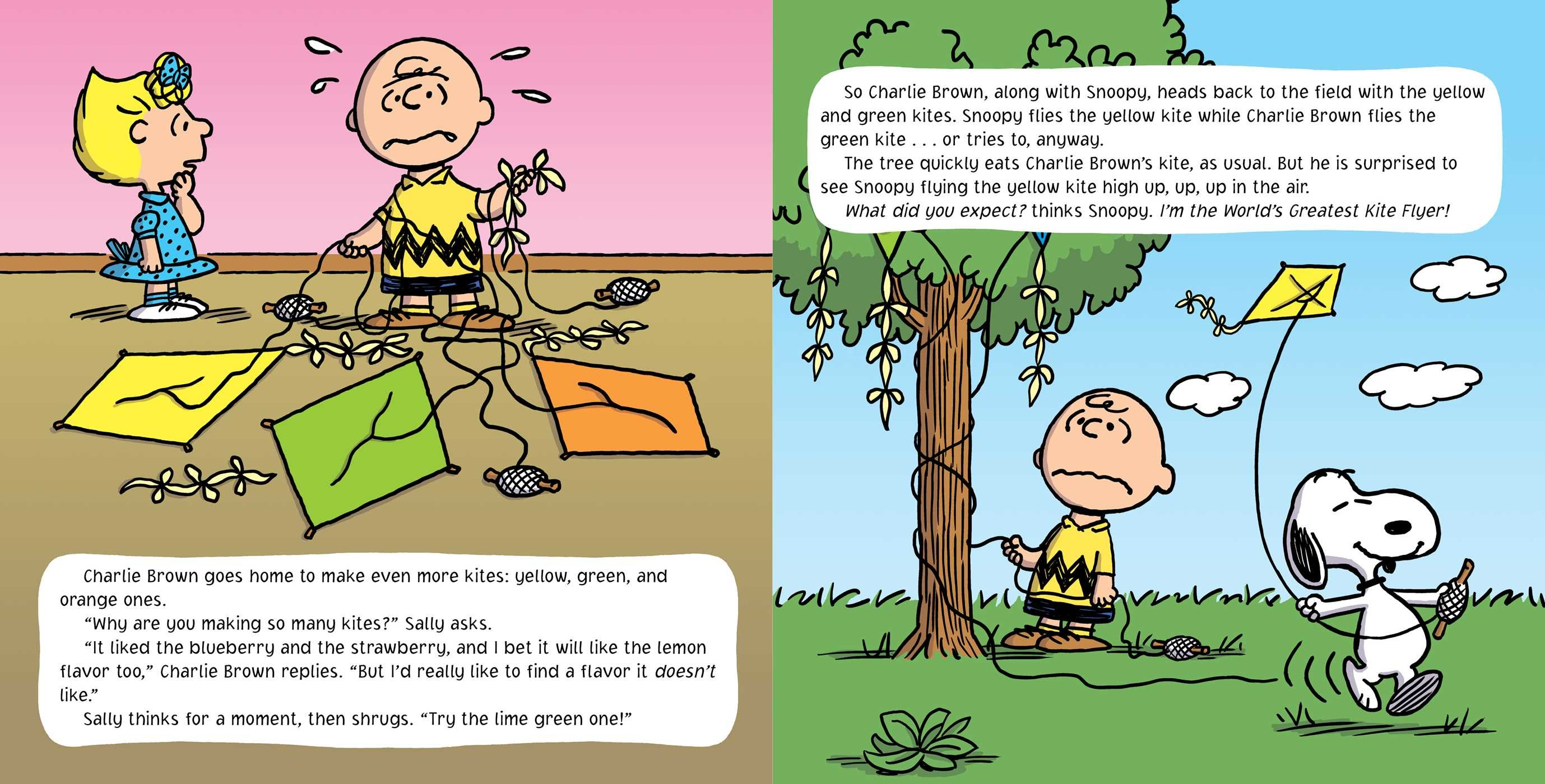 Go fly a kite charlie brown 9781481439558.in03
