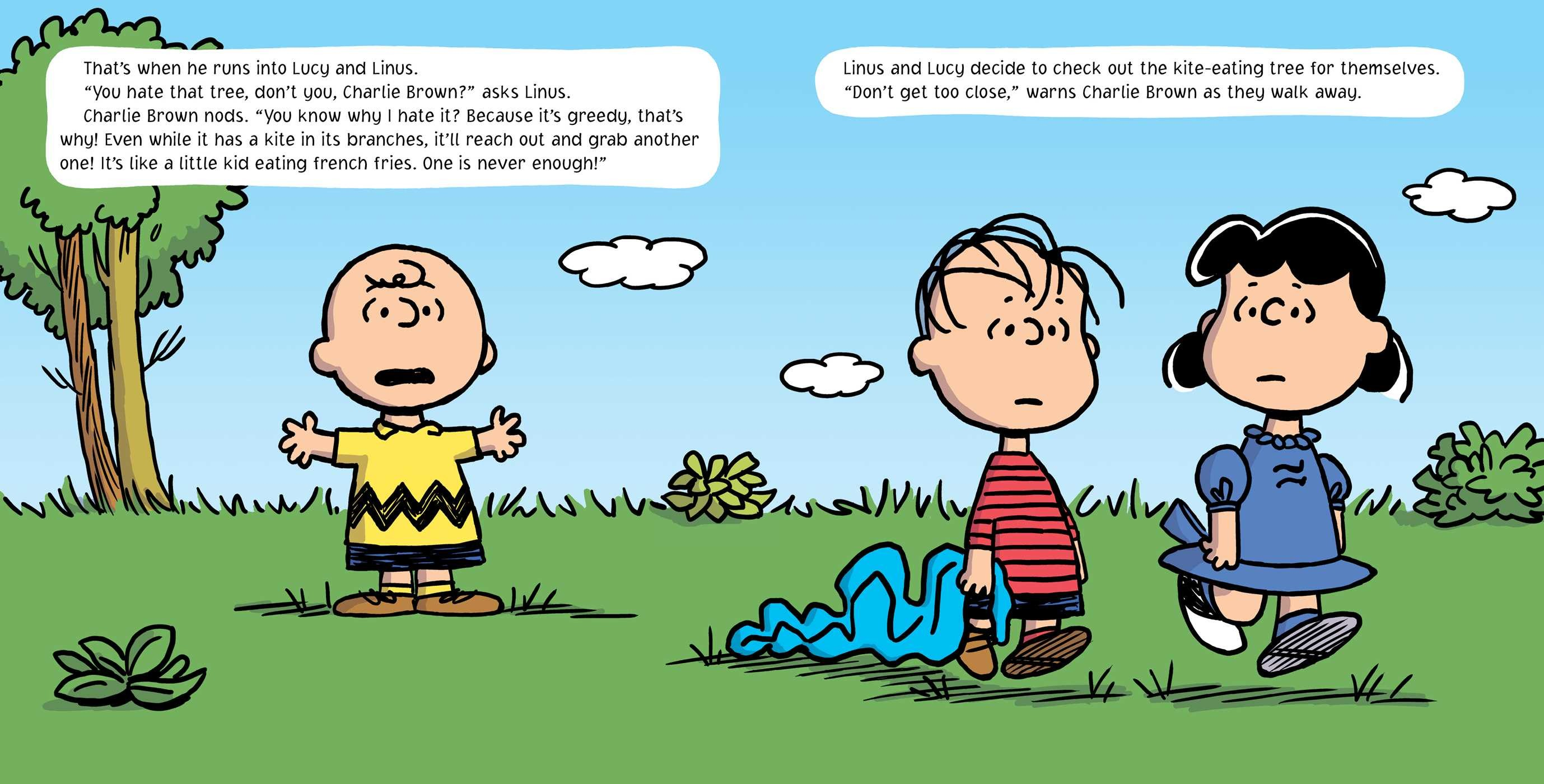 Go fly a kite charlie brown 9781481439558.in05