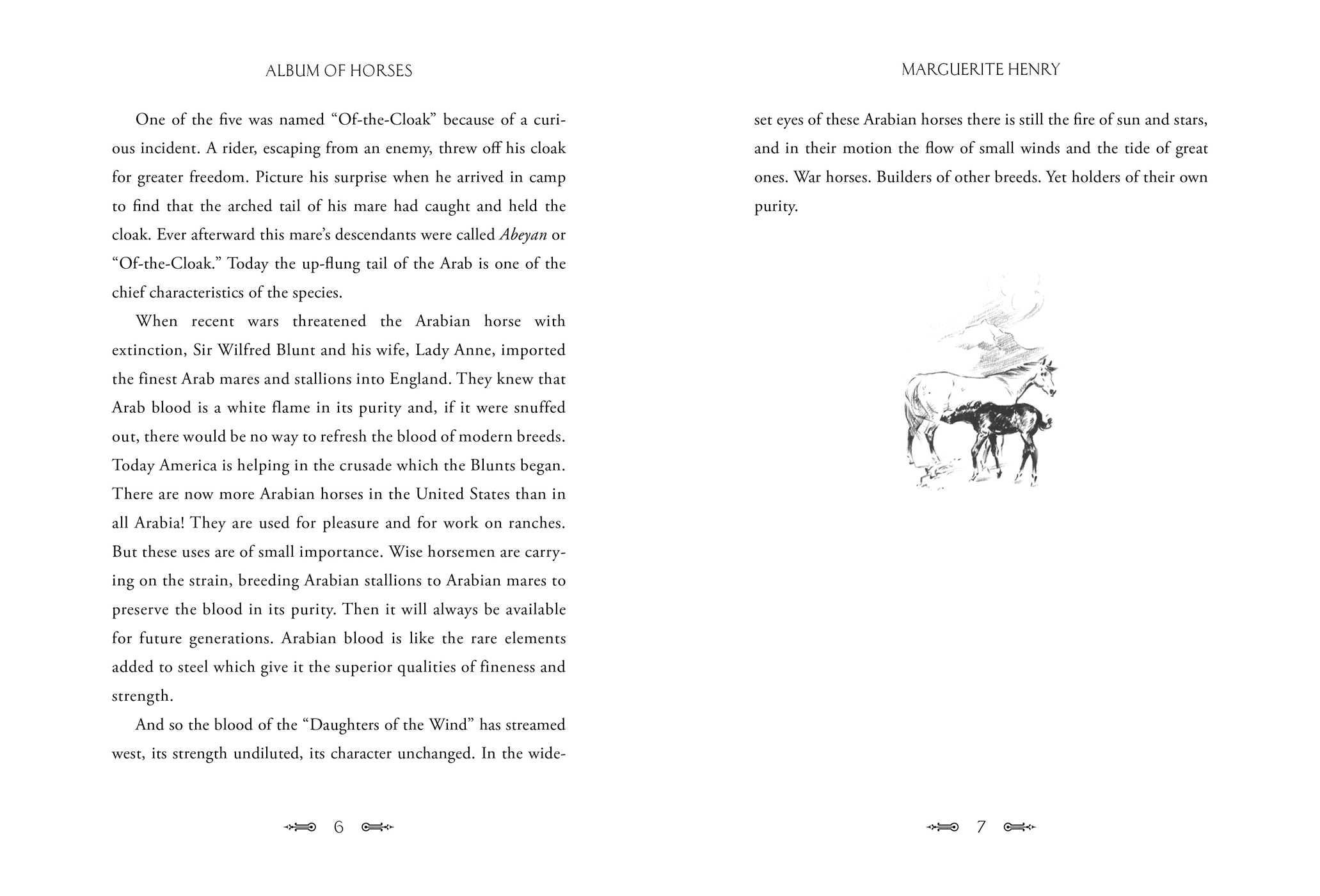Album of horses 9781481442589.in01