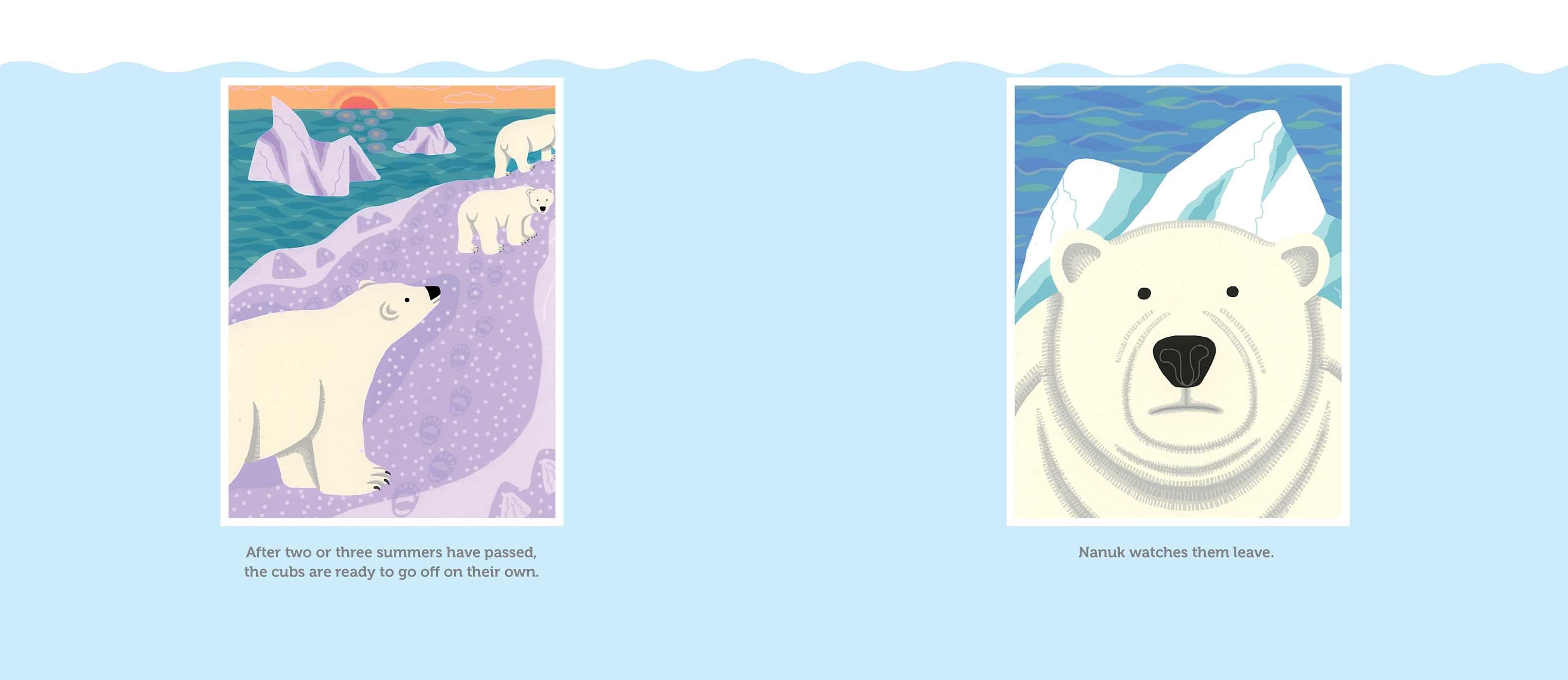 Nanuk the ice bear 9781481446679.in06