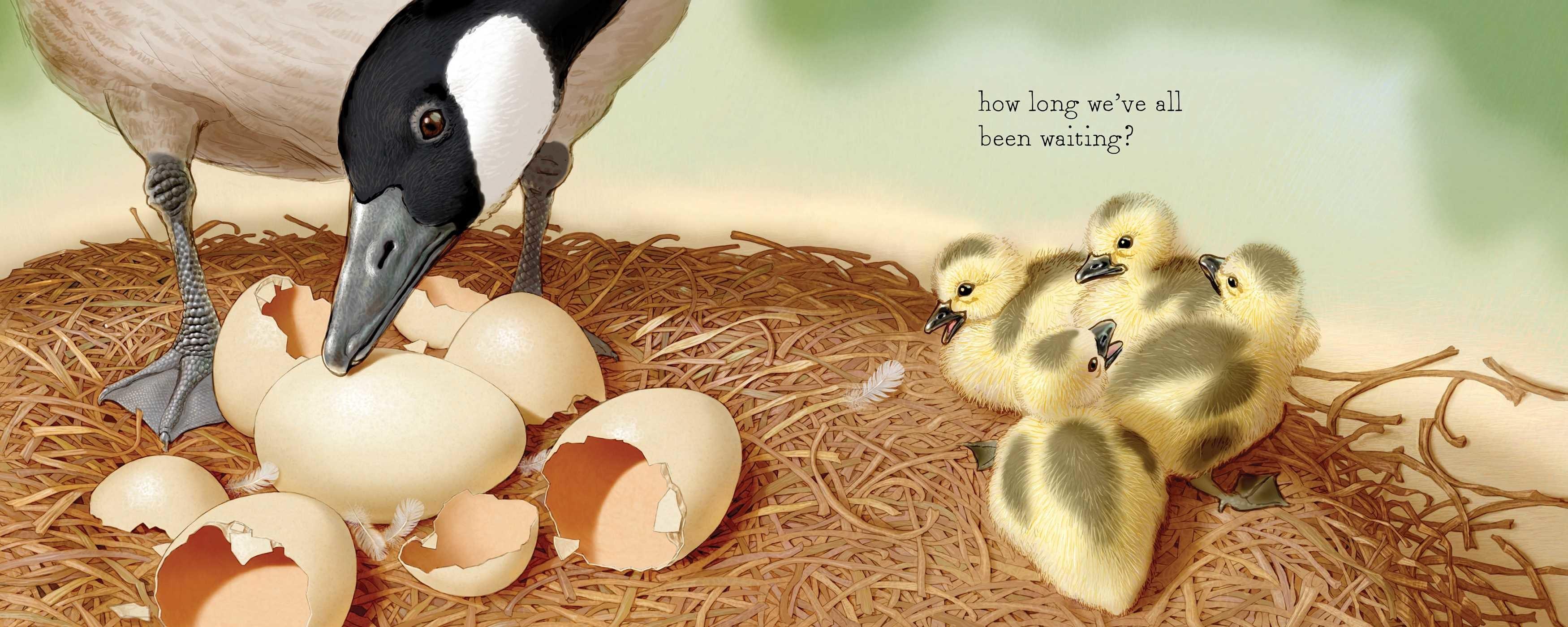 Shake a leg egg 9781481458481.in02