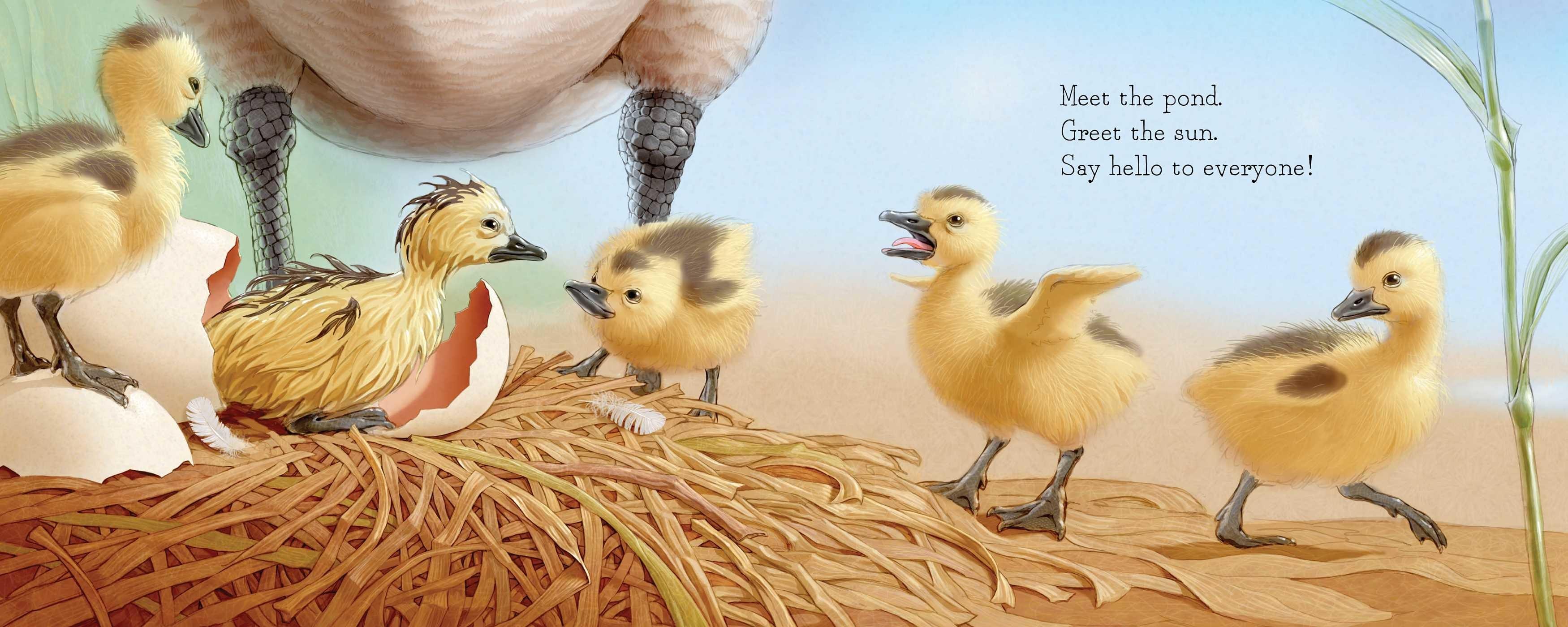Shake a leg egg 9781481458481.in06