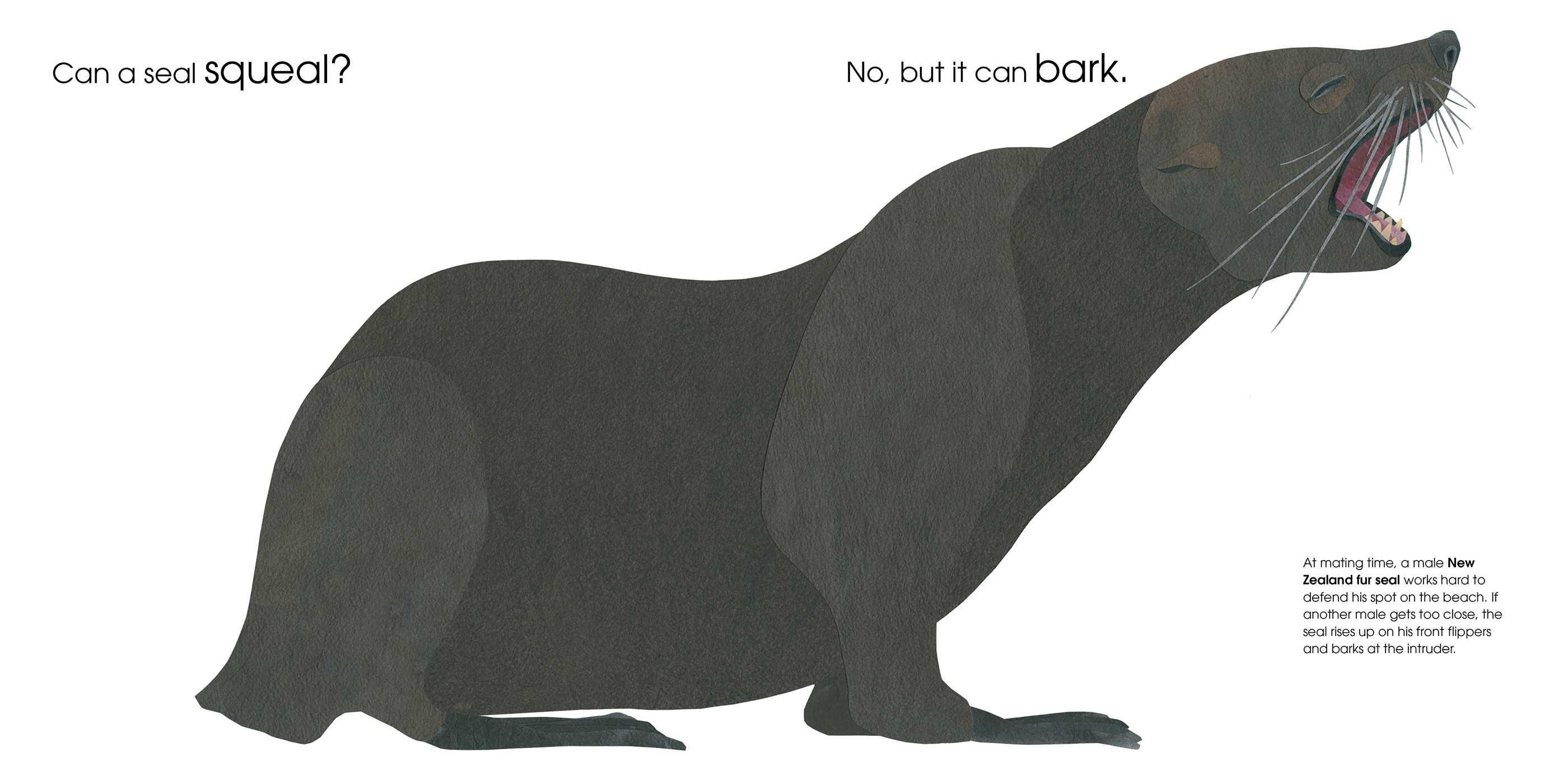 Can an aardvark bark 9781481458528.in01