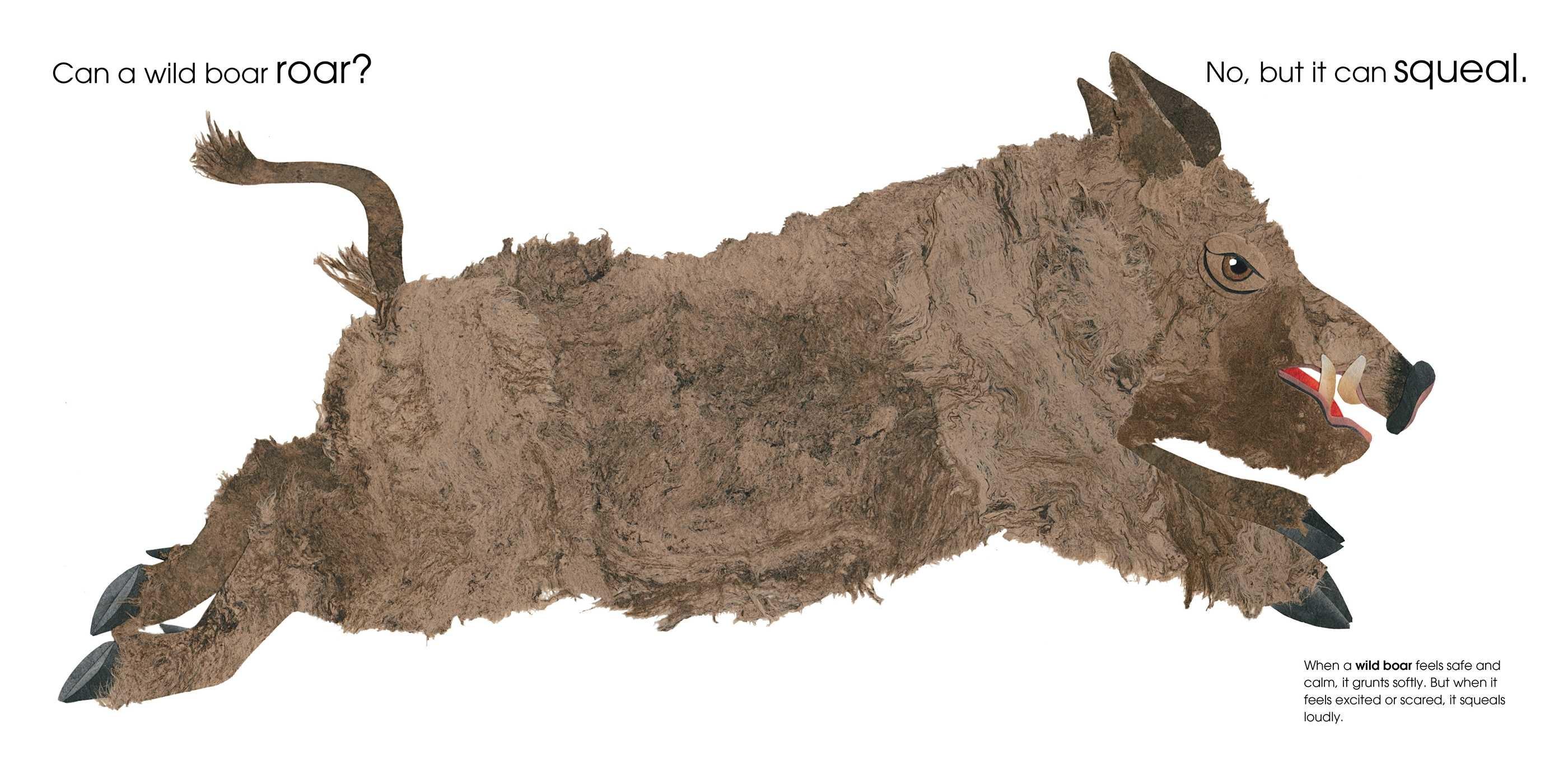 Can an aardvark bark 9781481458528.in03