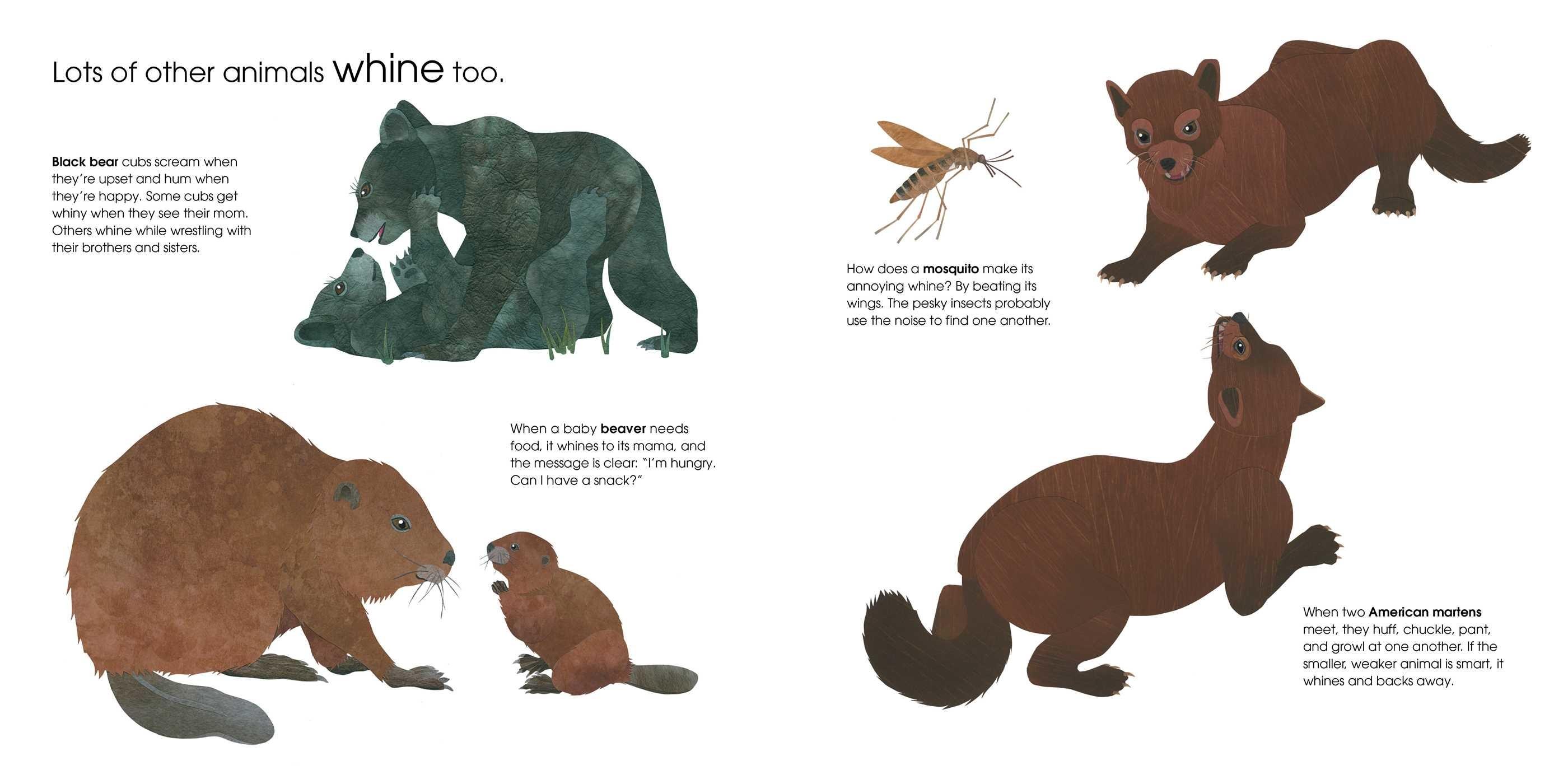 Can an aardvark bark 9781481458528.in06