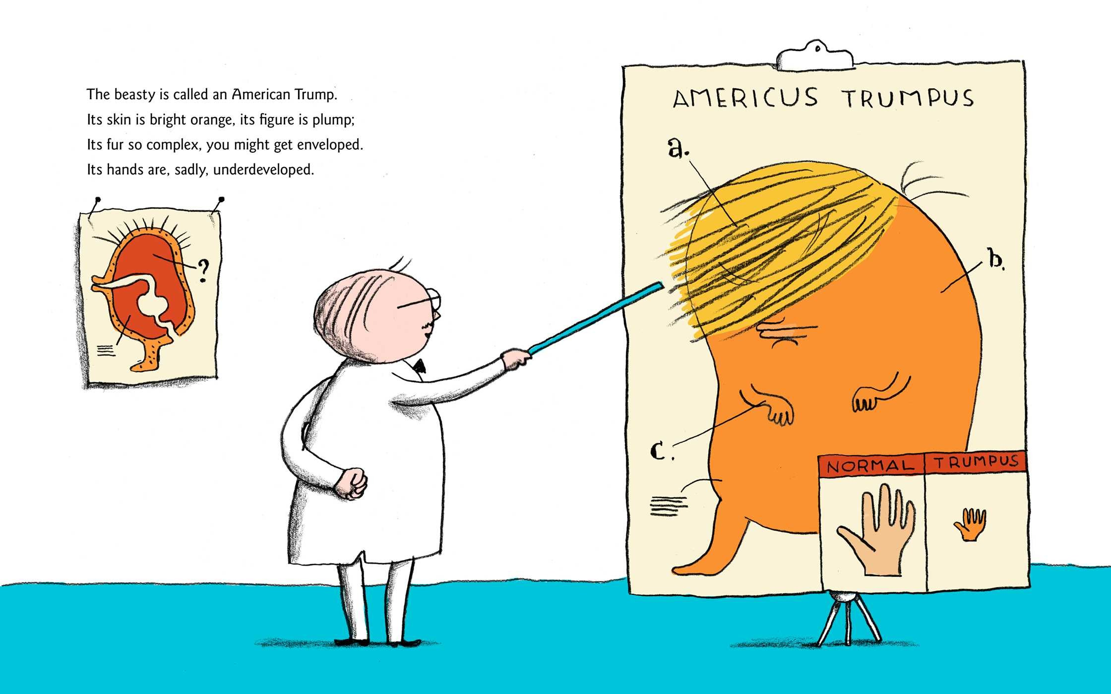 A Child's First Book of Trump | Book by Michael Ian Black ...