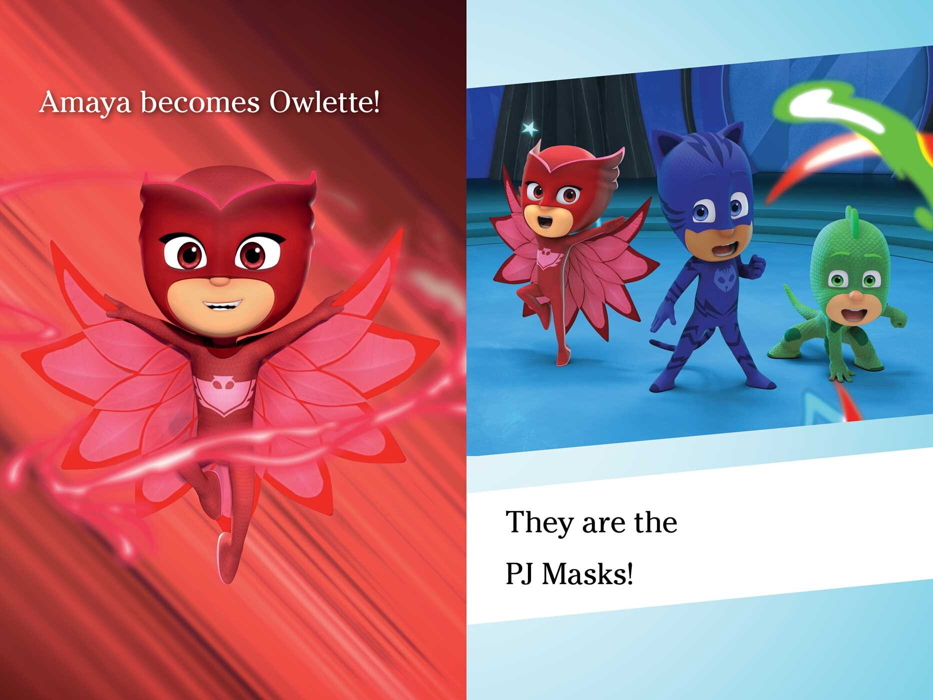 Pj Masks Save The Library Book By Daphne Pendergrass