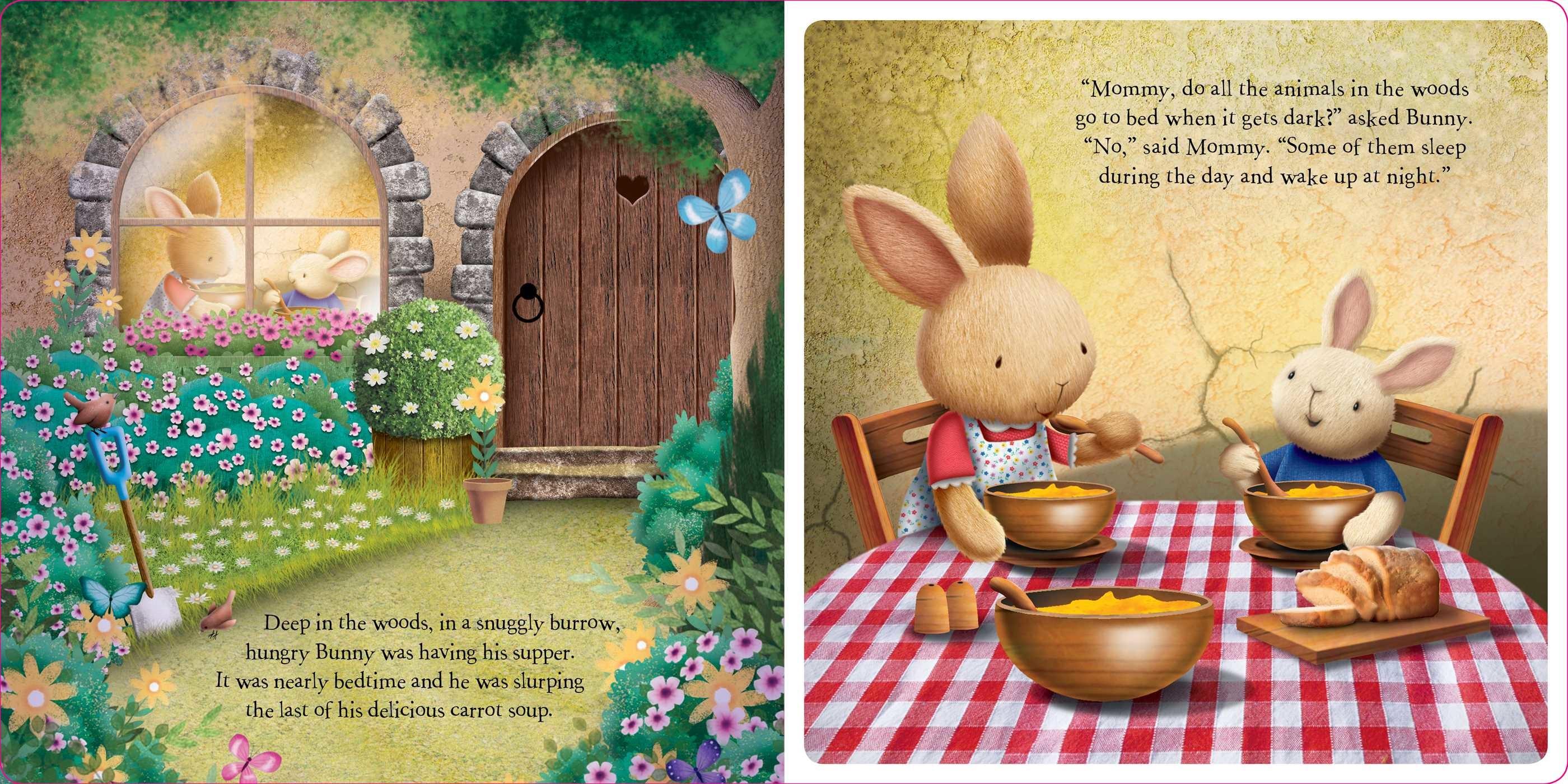 Nighttime bunny 9781499880816.in01