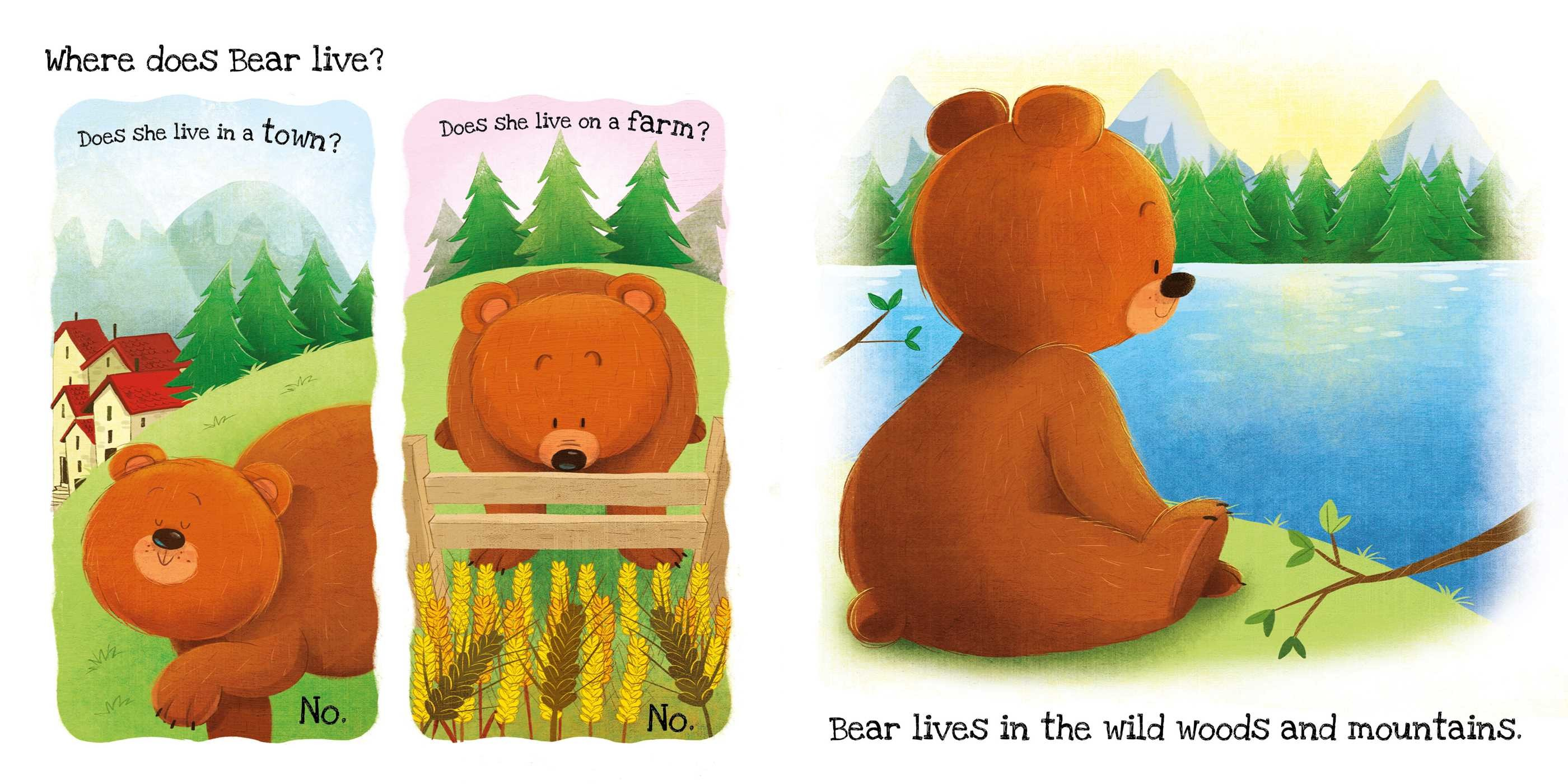 What does bear like 9781499882315.in01
