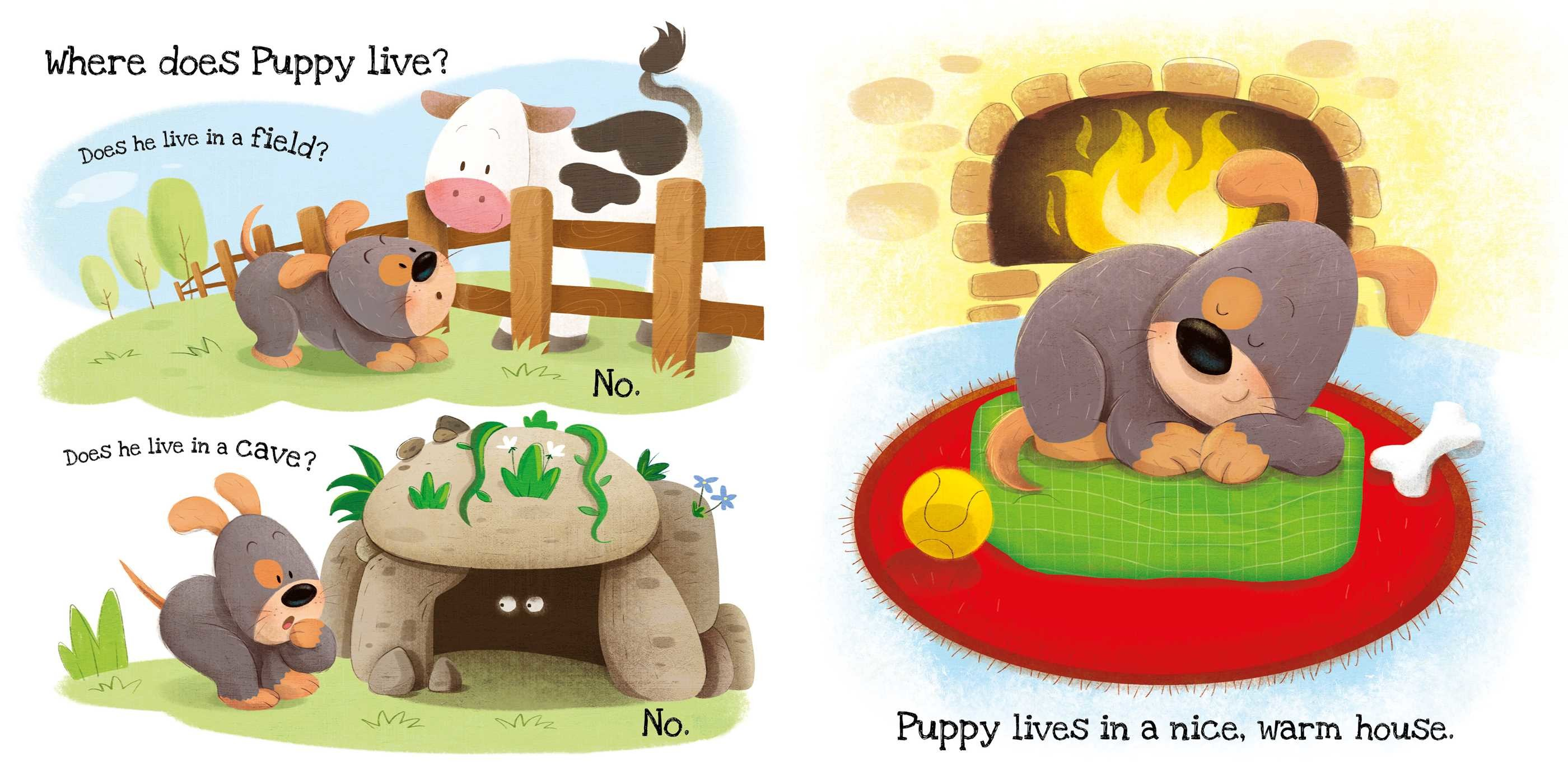 What does puppy like 9781499882346.in01