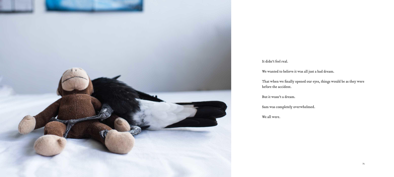 Penguin the magpie 9781501160356.in04