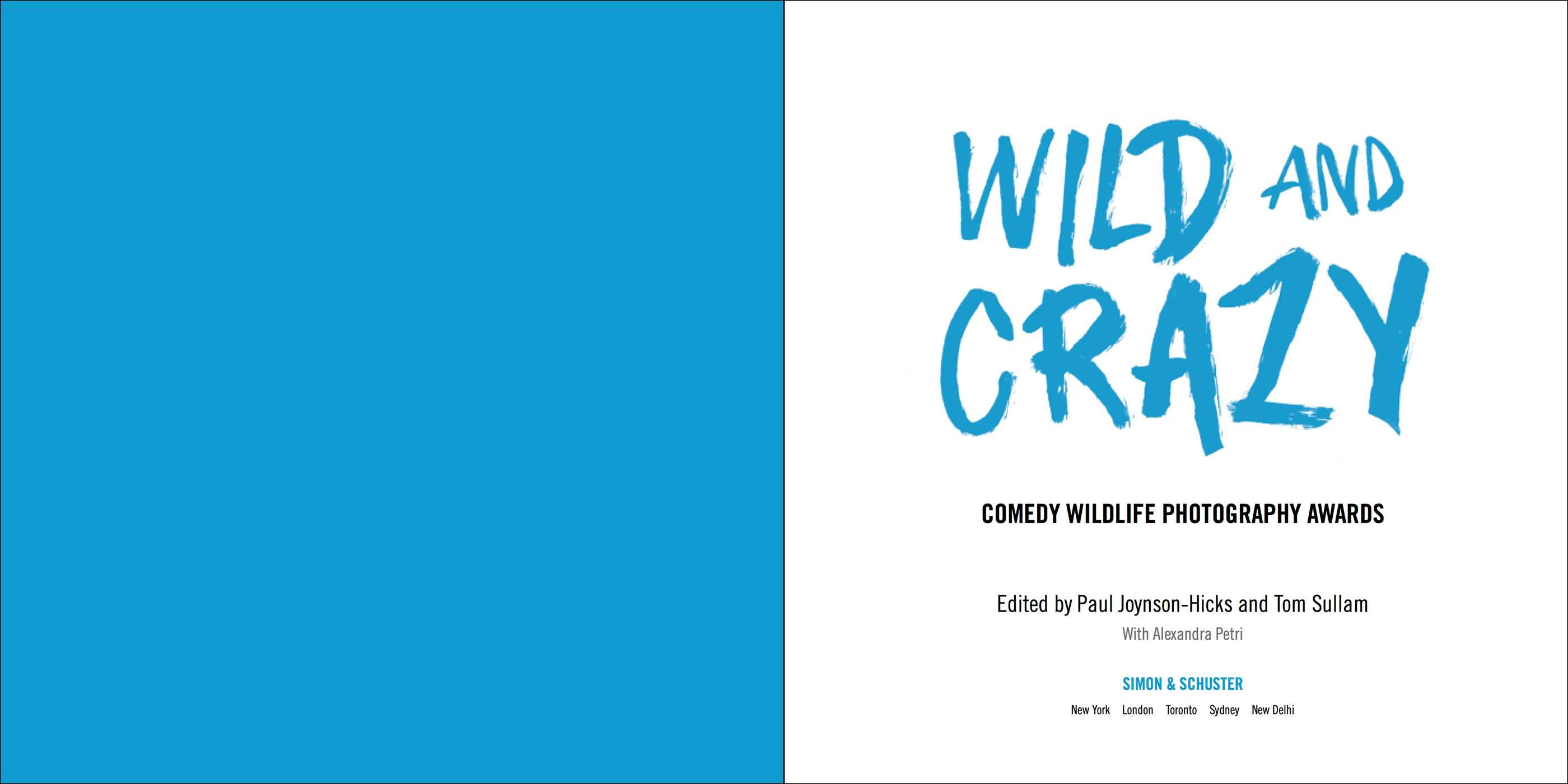 Wild and crazy 9781501174131.in01