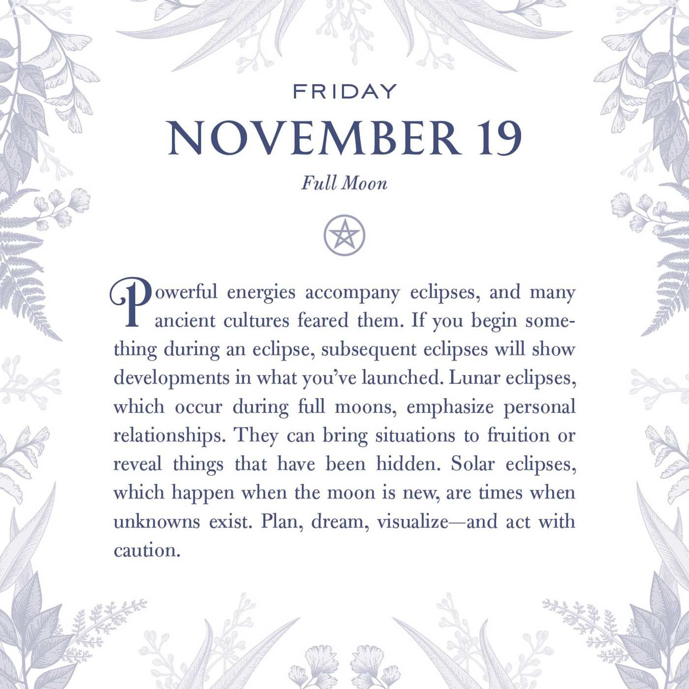 A Witch's Year 2021 Daily Calendar - Book Summary & Video ...
