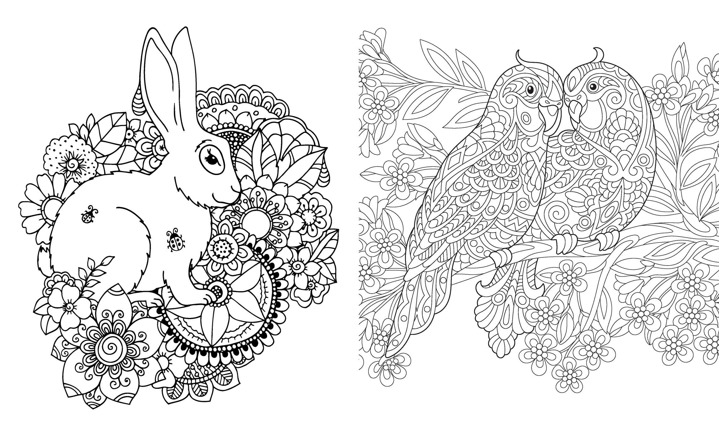 Posh Glitter Coloring Book Secret Garden Book By Andrews Mcmeel Publishing Official Publisher Page Simon Schuster