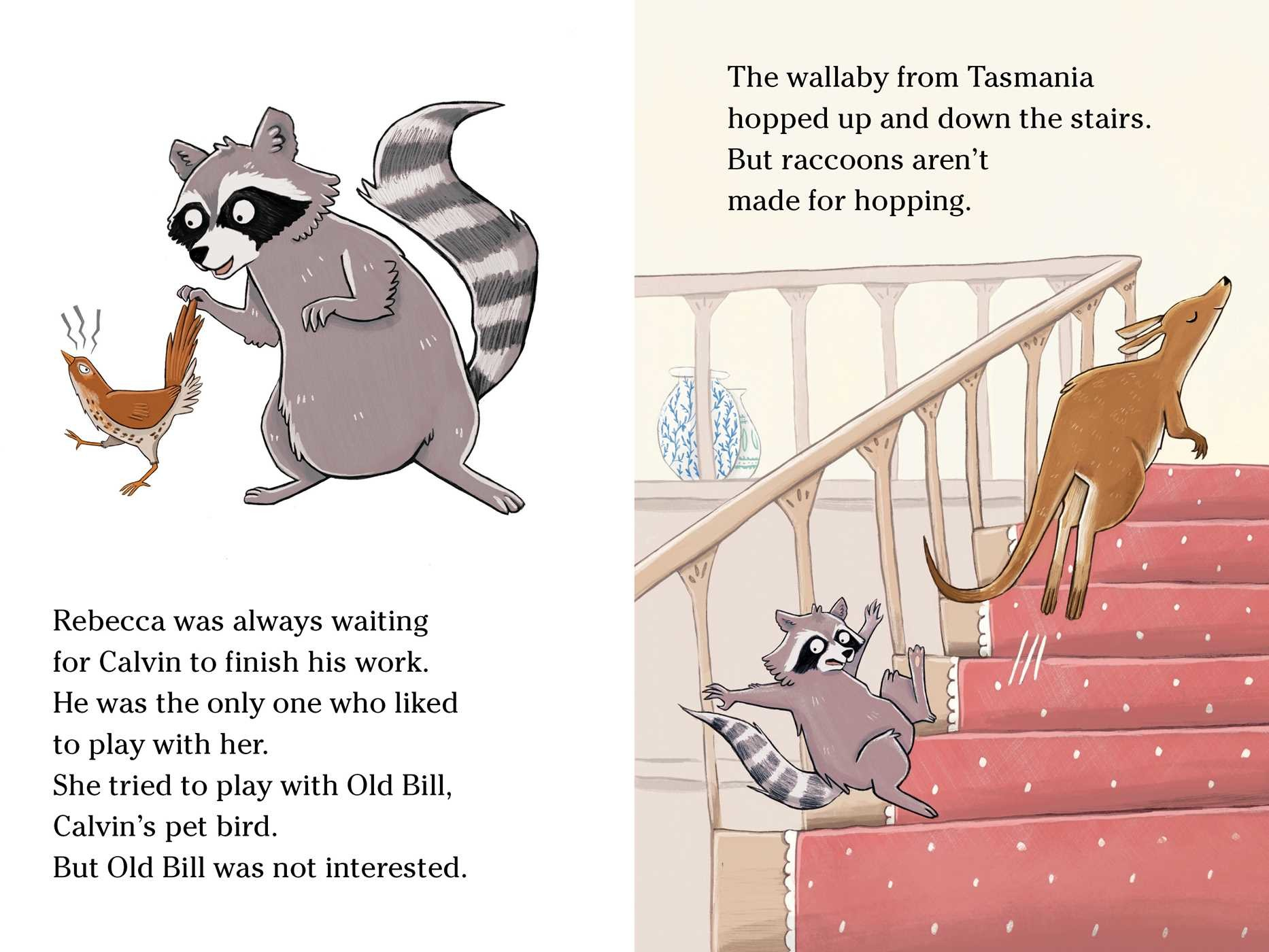 A raccoon at the white house 9781534405417.in06