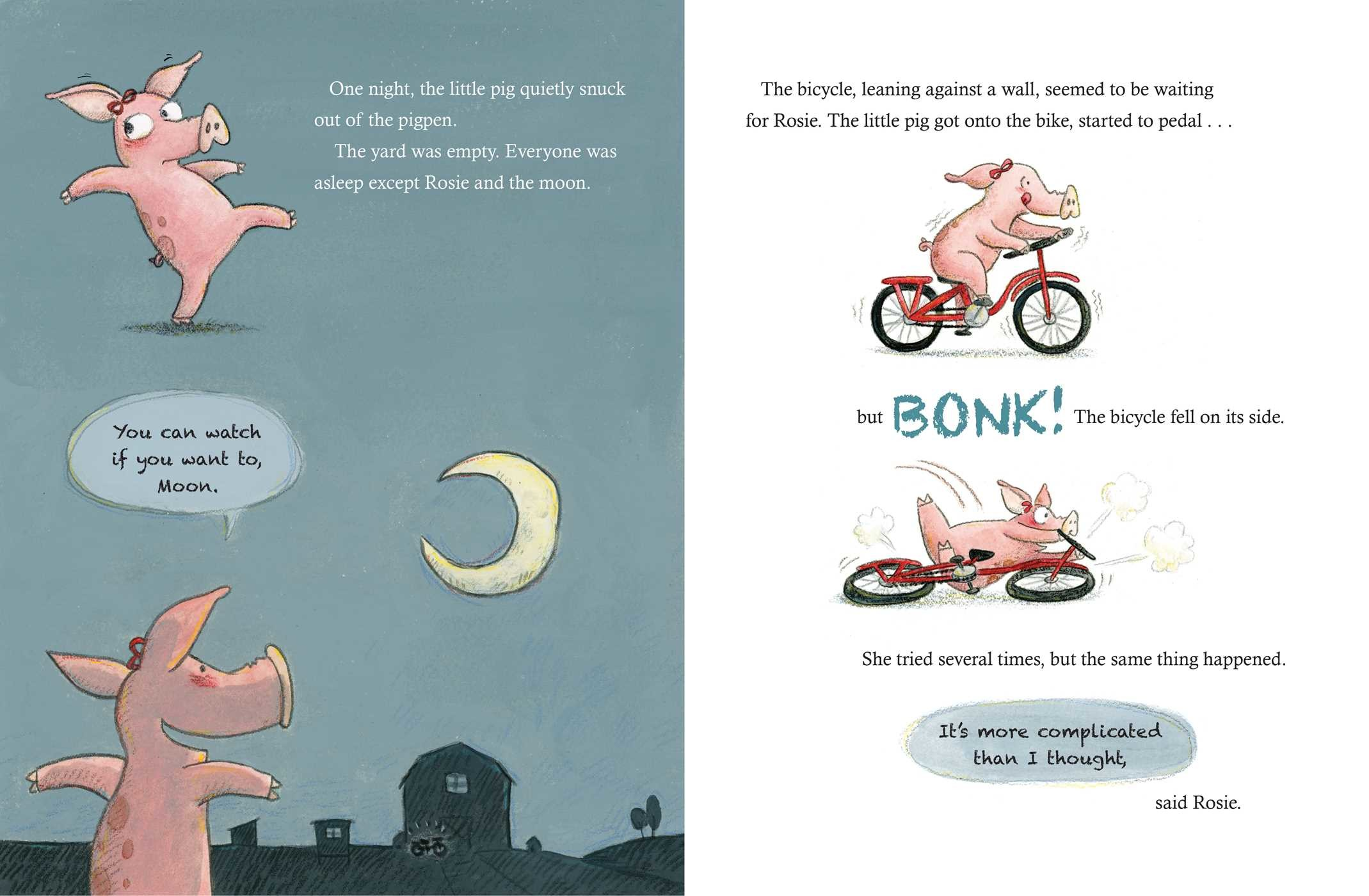 The little pig the bicycle and the moon 9781534414723.in03