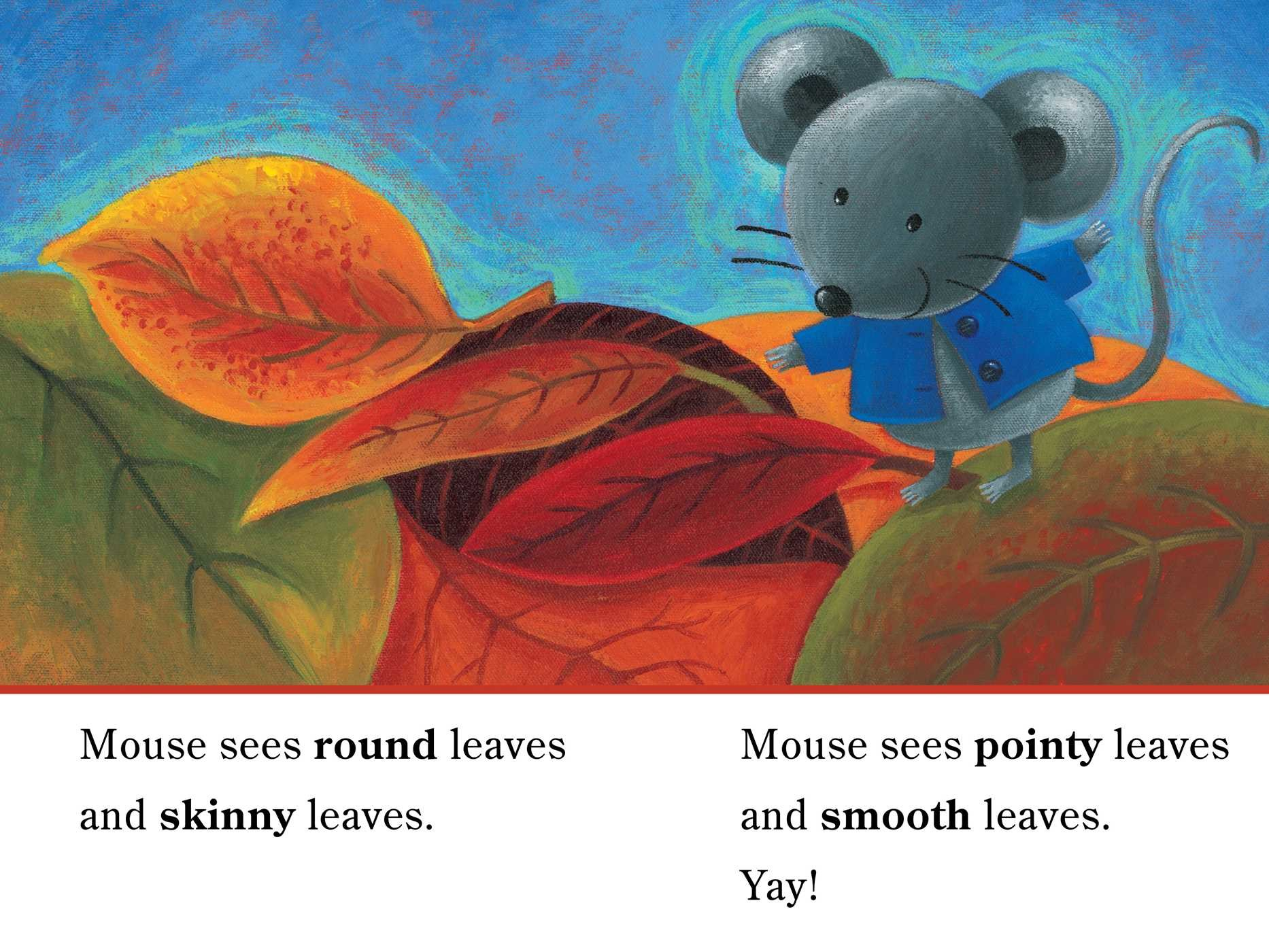 Mouse loves fall 9781534421462.in04