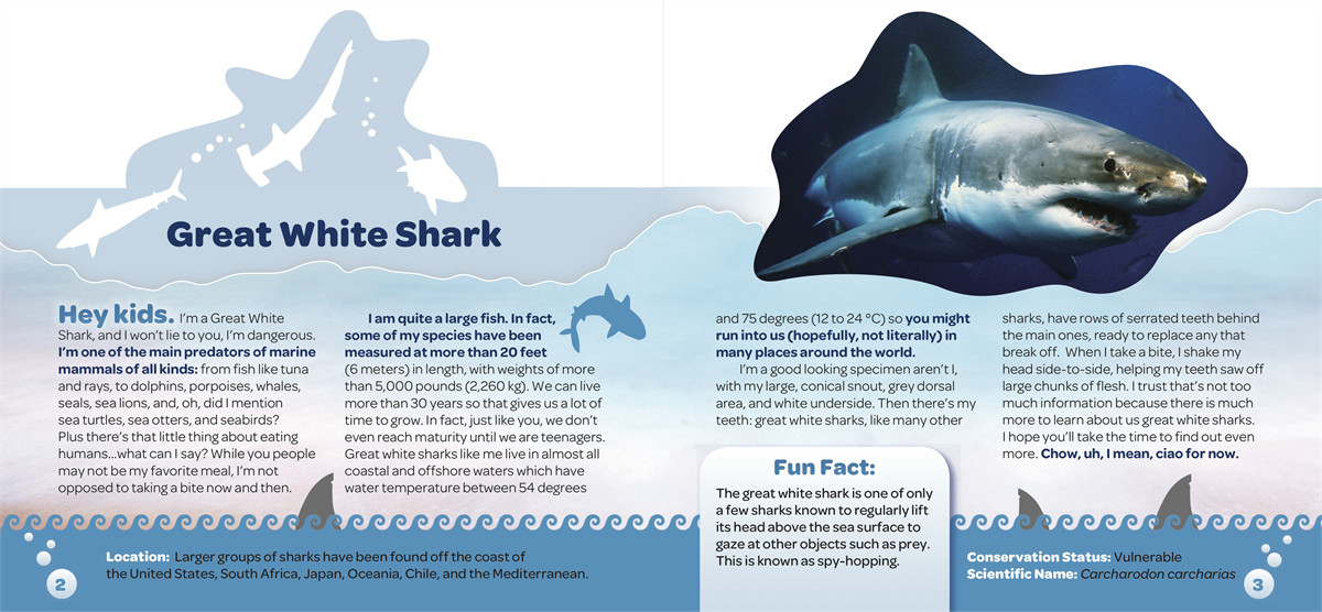 Kids Meet the Sharks and Other Giant Sea Creatures | Book by