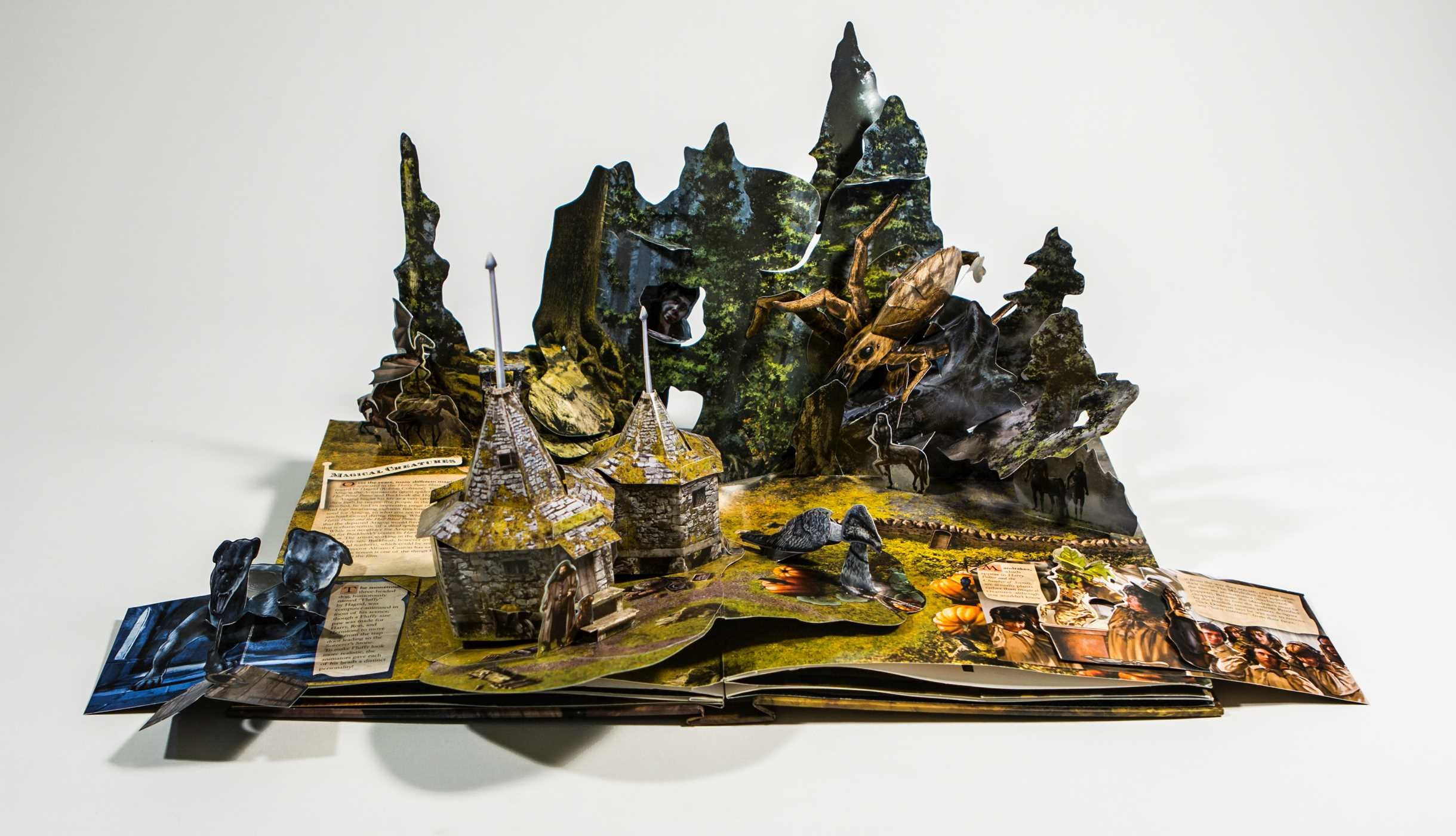 Harry Potter A Pop Up Book Book By Andrew Williamson