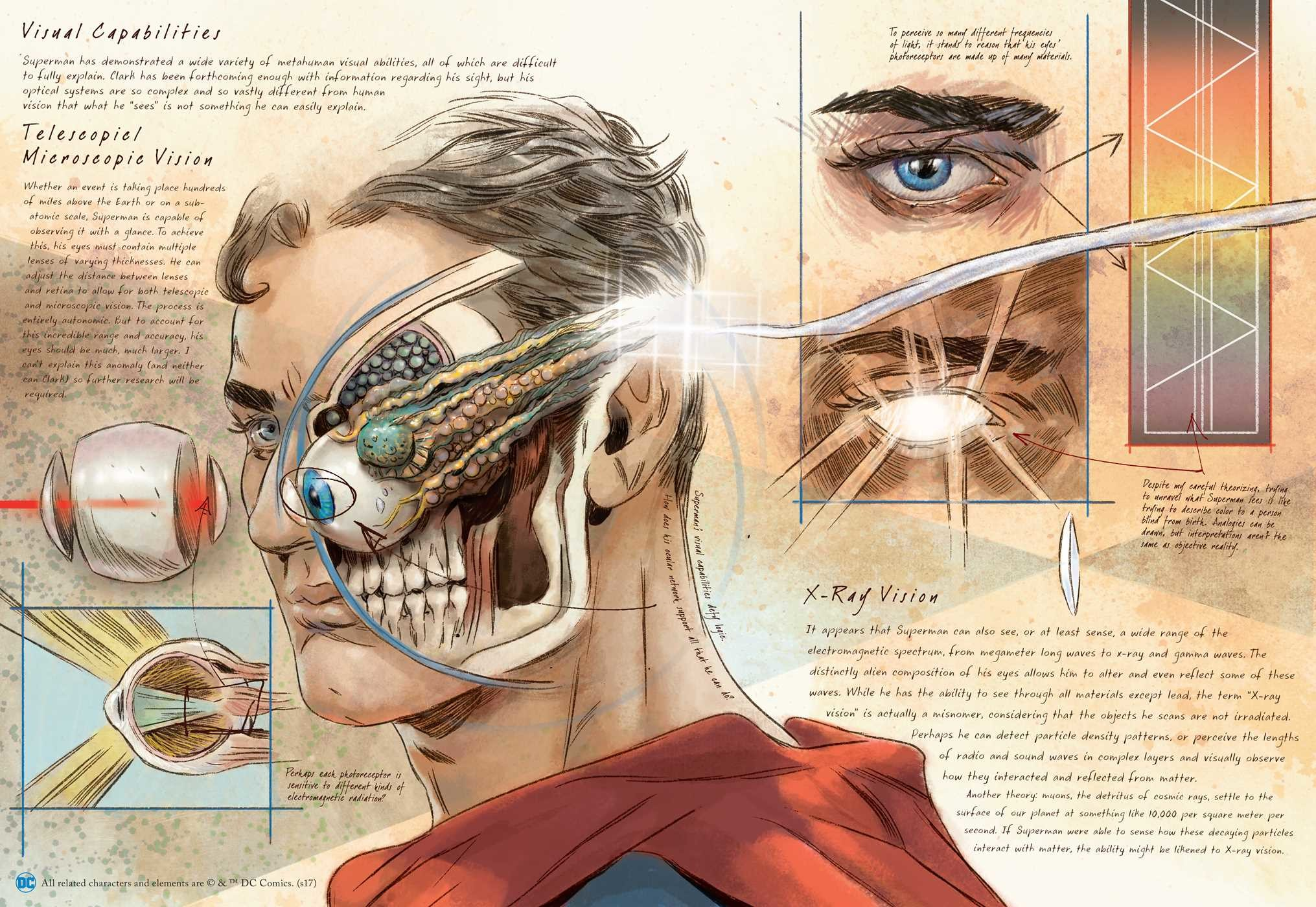 DC Comics: Anatomy of a Metahuman | Book by S.D. Perry, Matthew ...