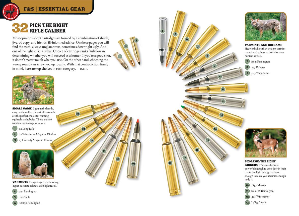 Field stream skills guide hunting 9781616284138.in02