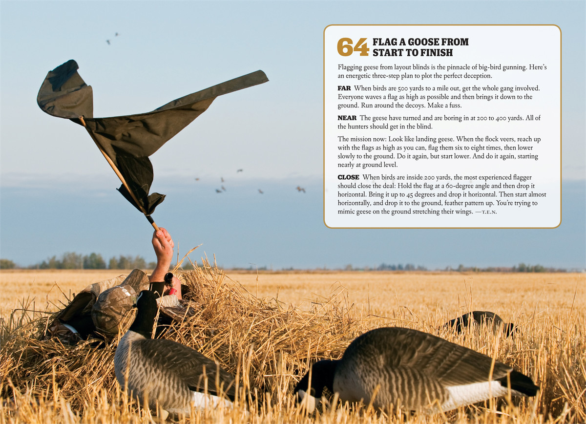 Field stream skills guide hunting 9781616284138.in04