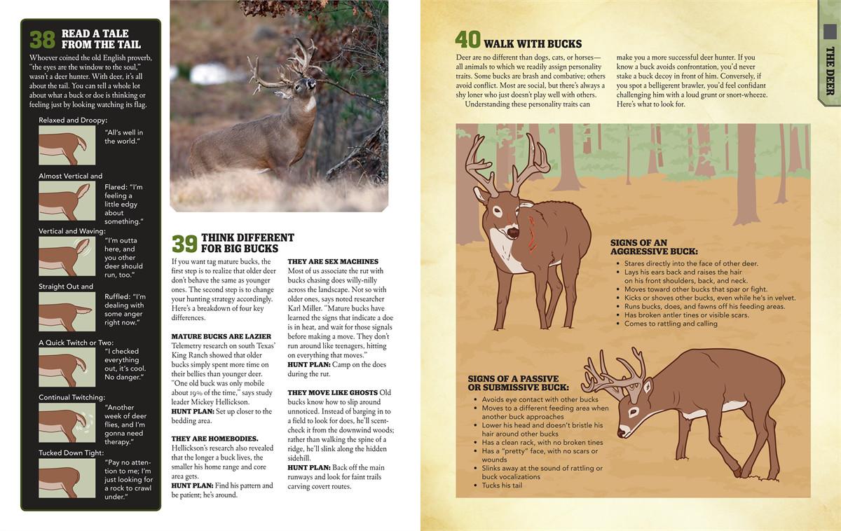 The Deer Hunter Stream
