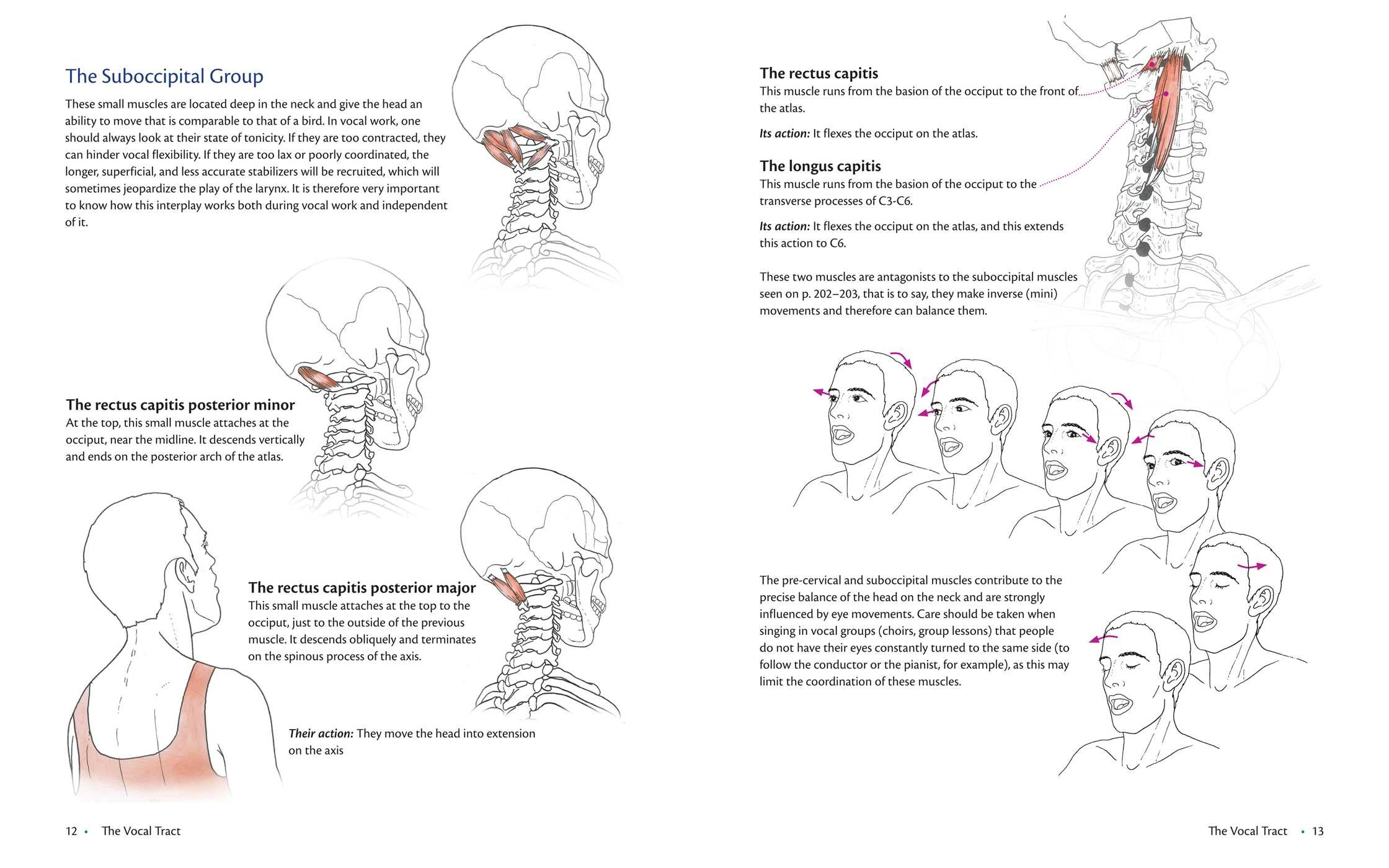 Anatomy of Voice | Book by Blandine Calais-Germain, François Germain ...