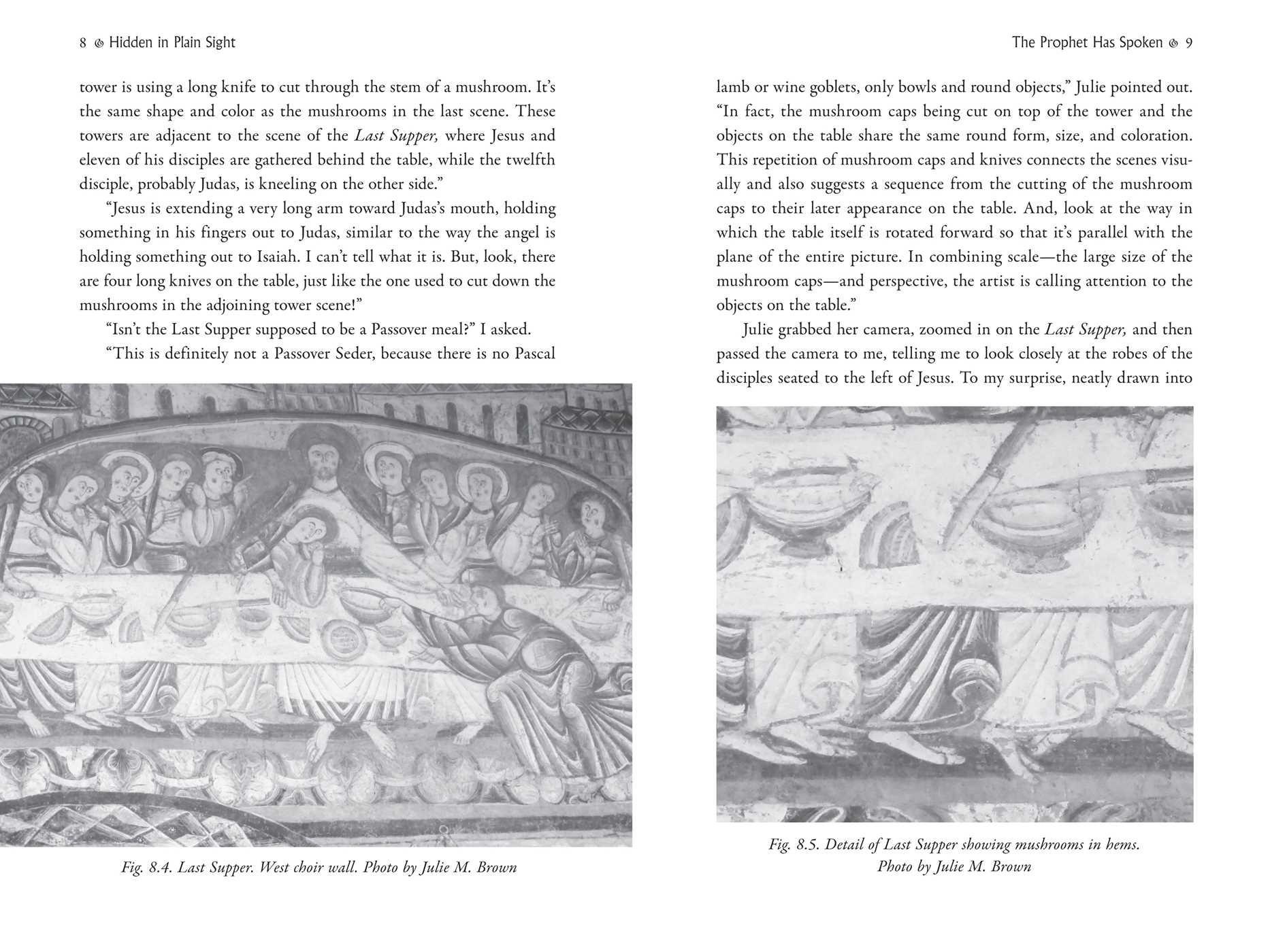 The psychedelic gospels 9781620555026.in03