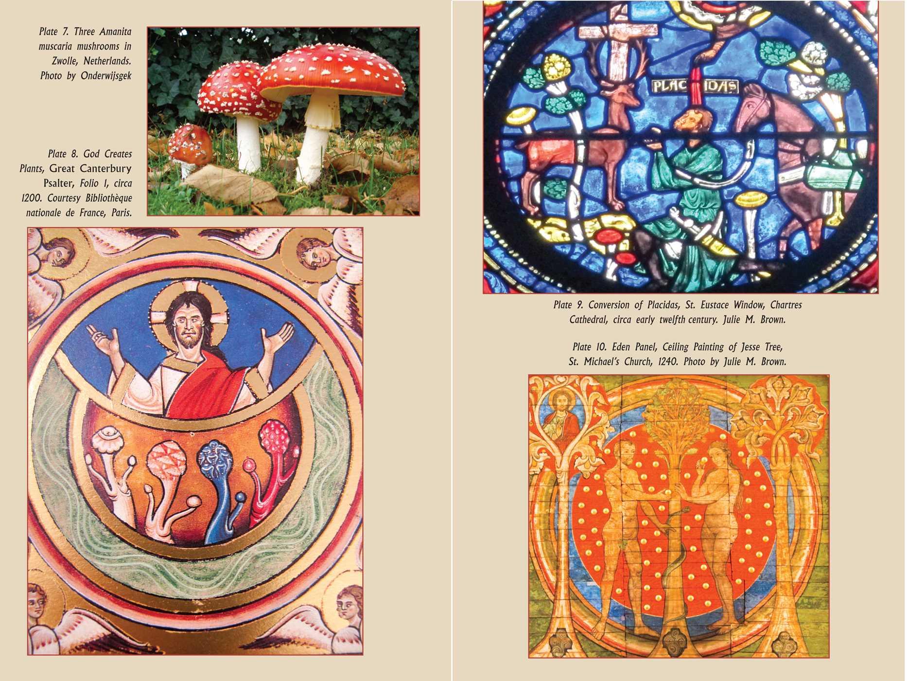 The psychedelic gospels 9781620555026.in05